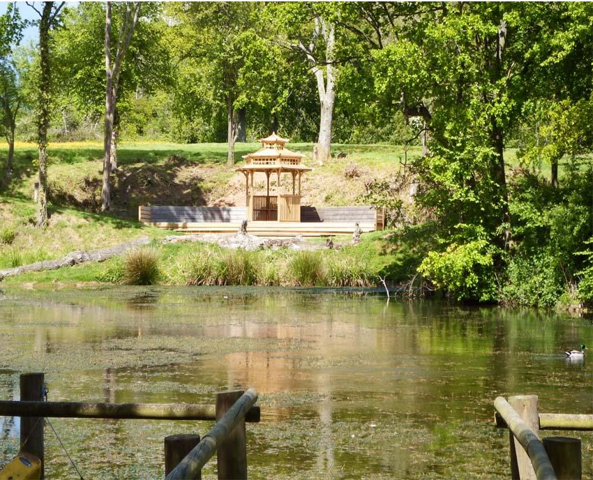 Pond-scene-2.jpg
