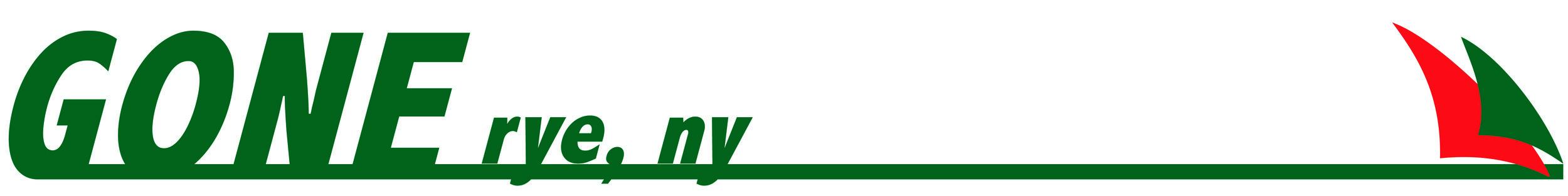 Logo design for a Motorboat