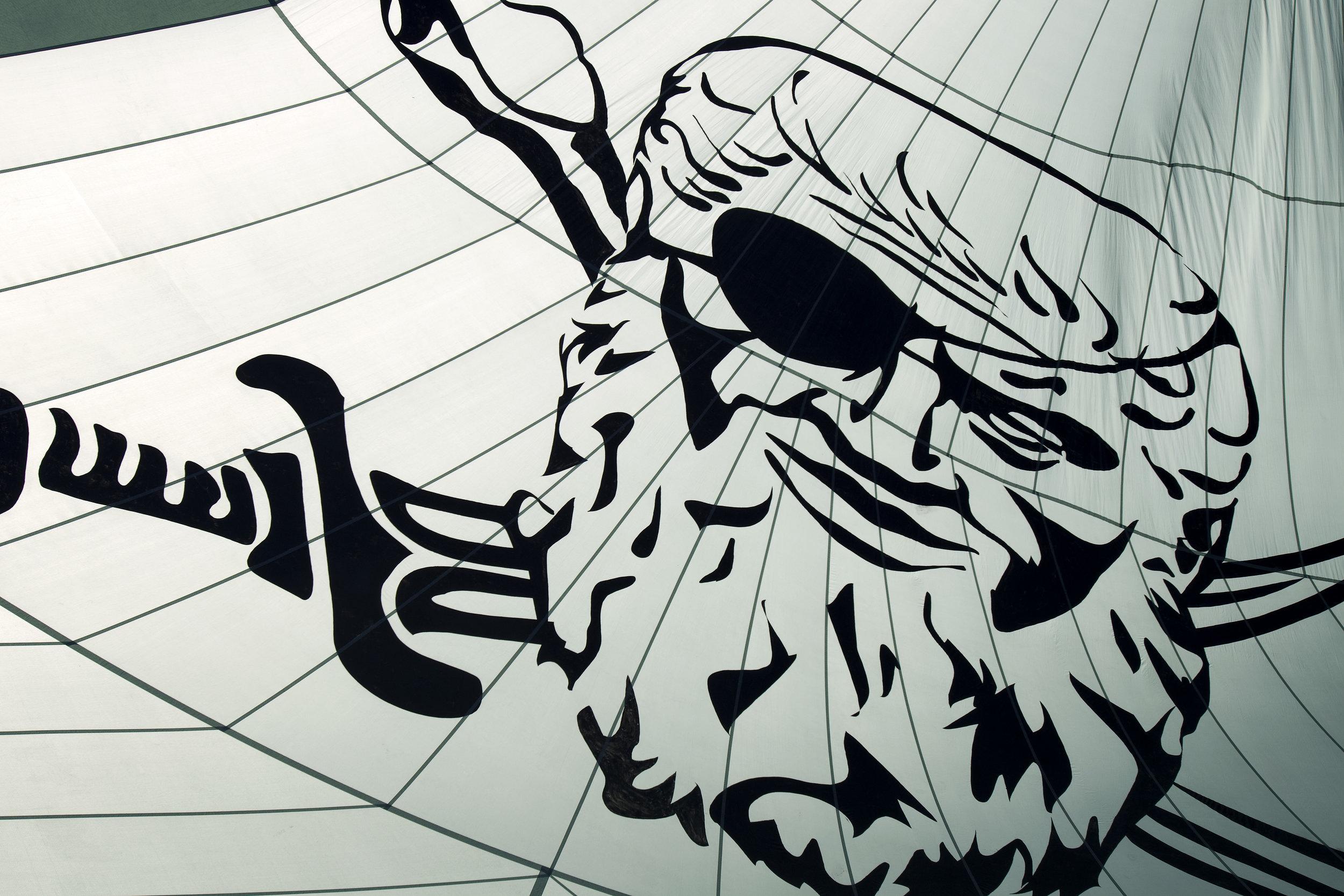 Spinnaker Sail with Phaedo Logo