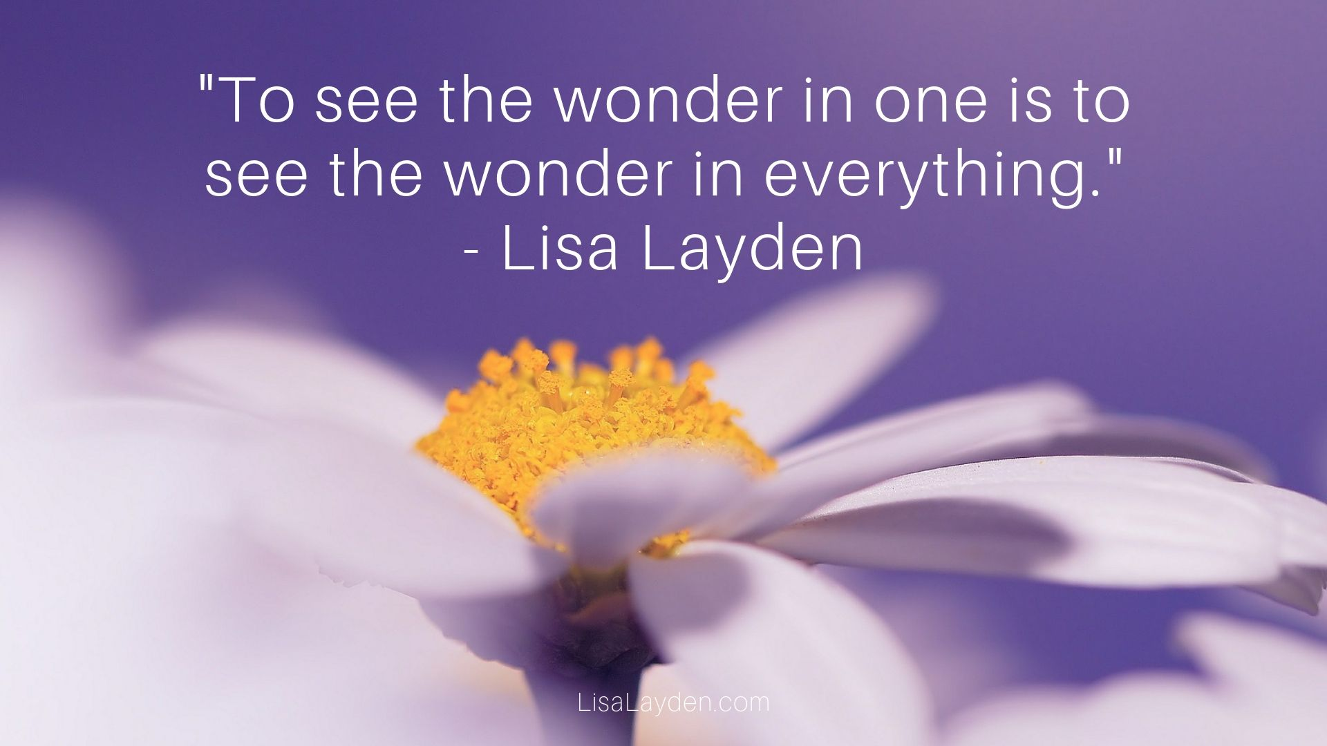 "Quote - ""To see the wonder in one is to see the wonder in everything."" – Lisa Layden"