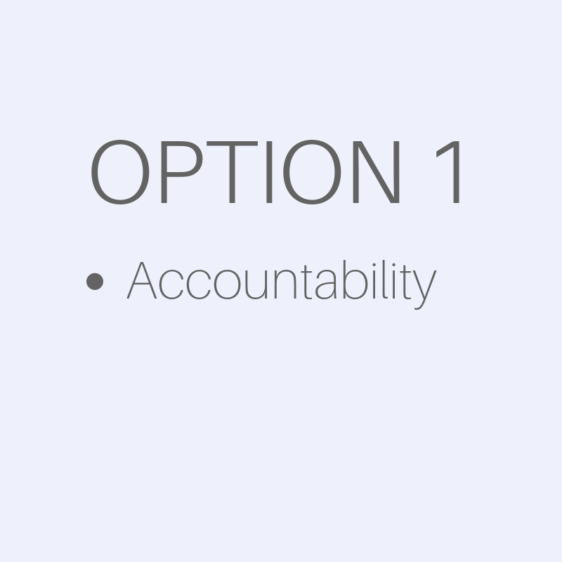 Business Services - Option 1 - accountability