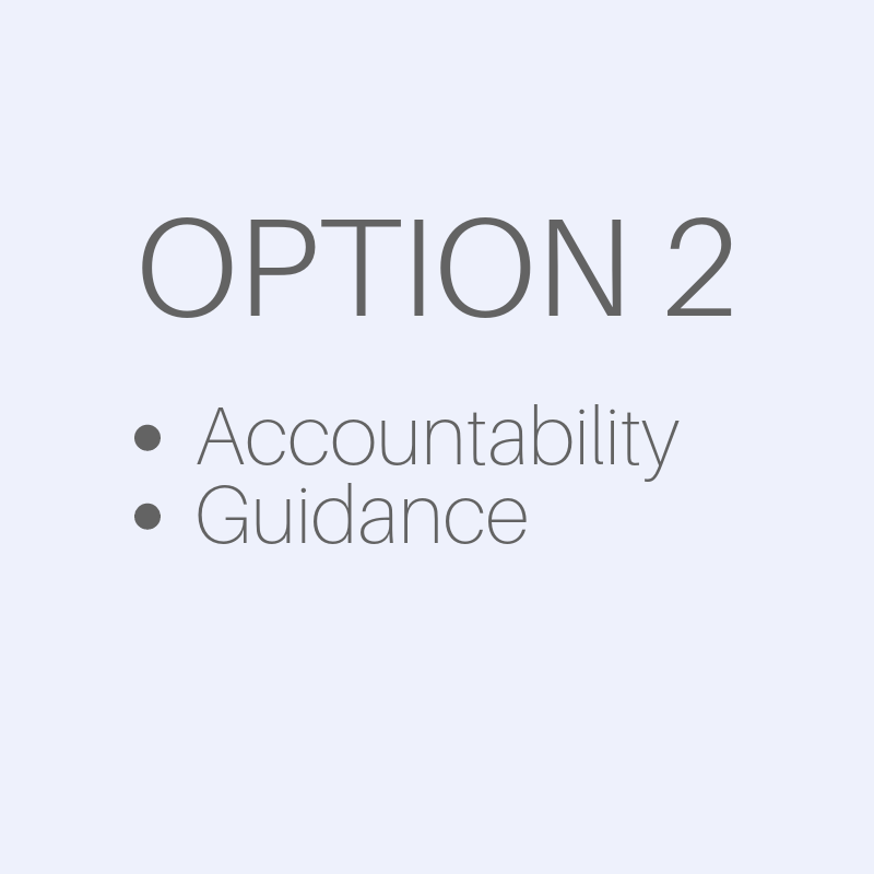 Business Services - Option 2 - accountability and guidance