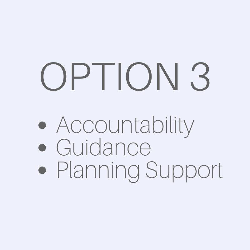 Business Services - Option 2 - accountability, guidance and planning support