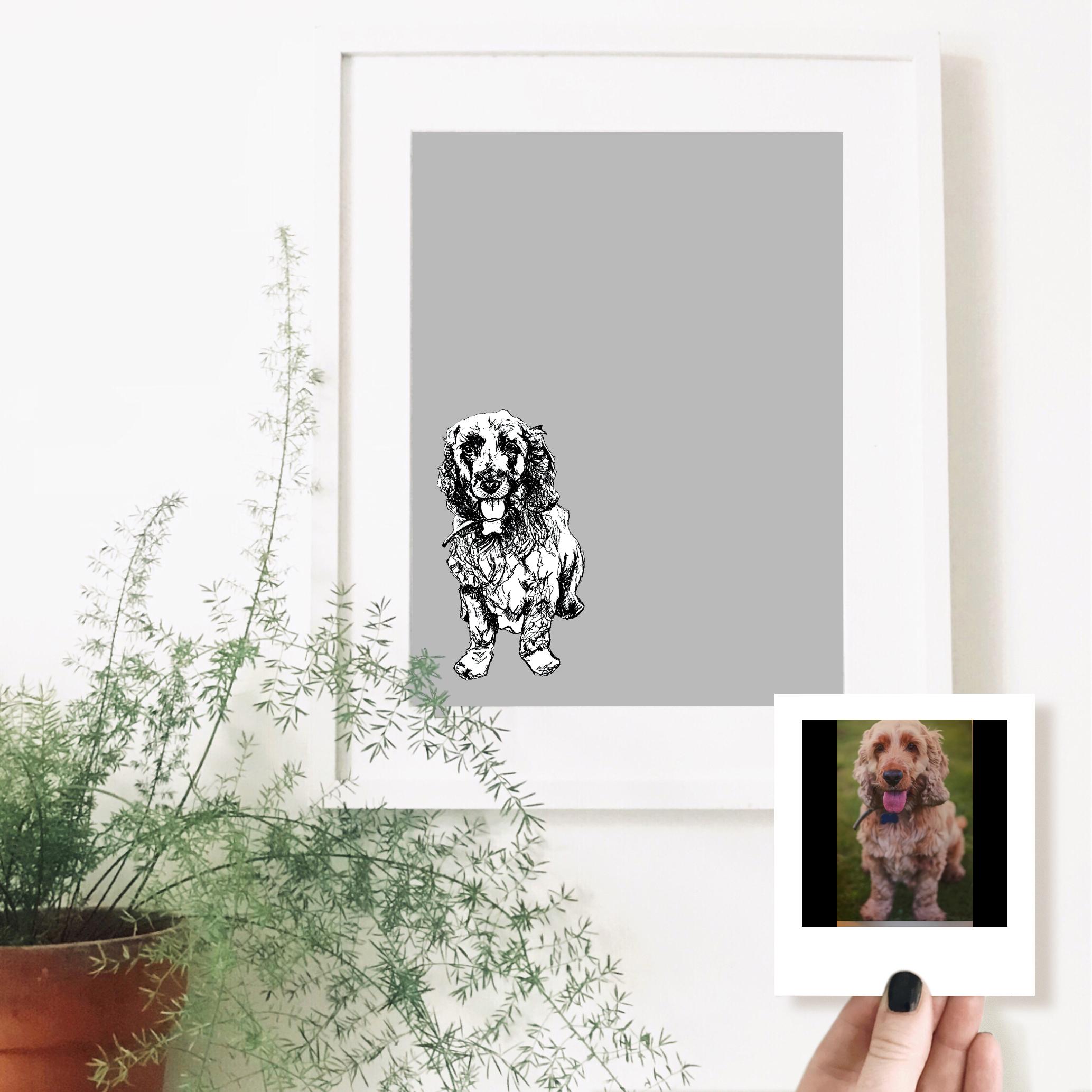 buddy-dog-pet-portrait-drawing.jpg
