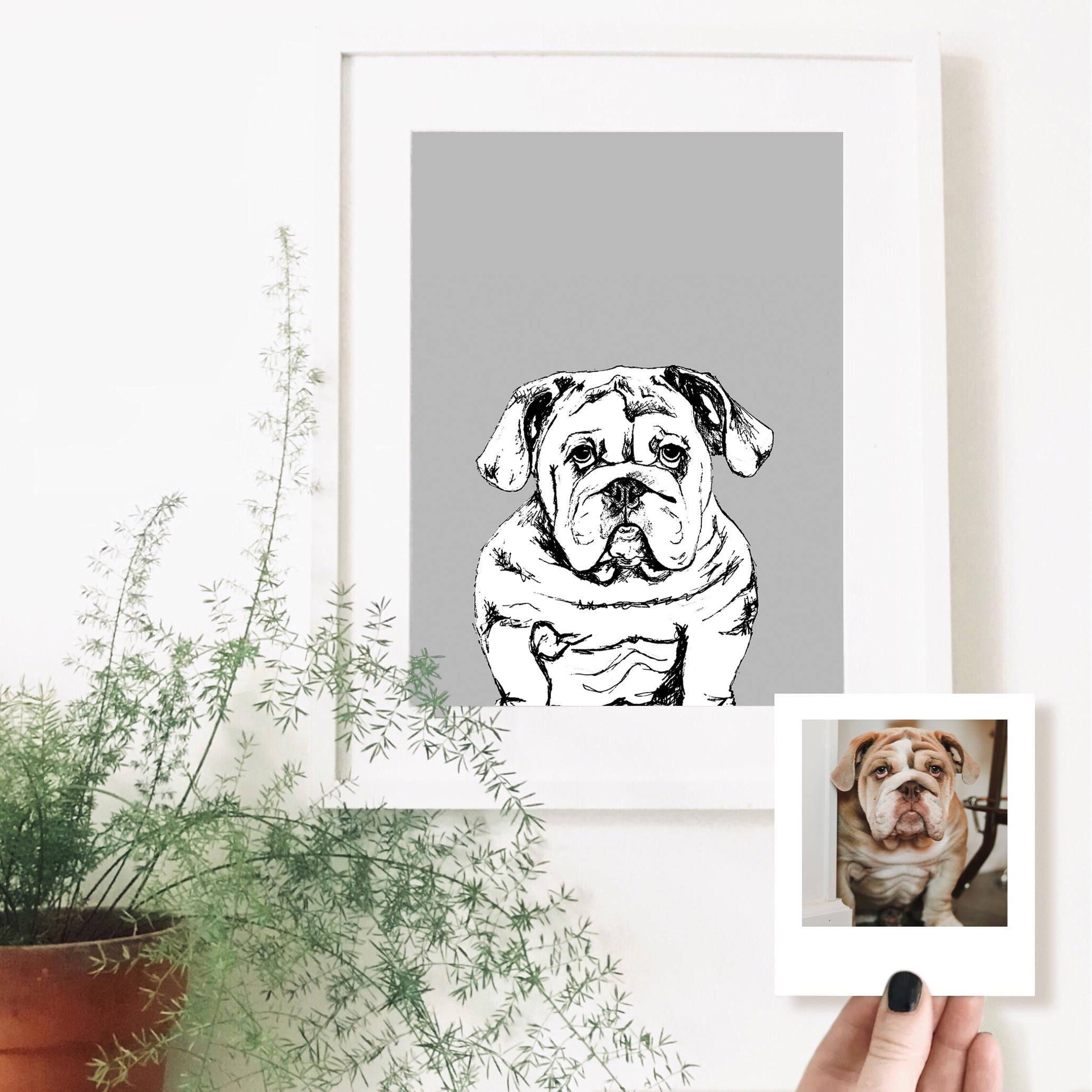 bulldog-dog-pet-portrait-drawing.jpg