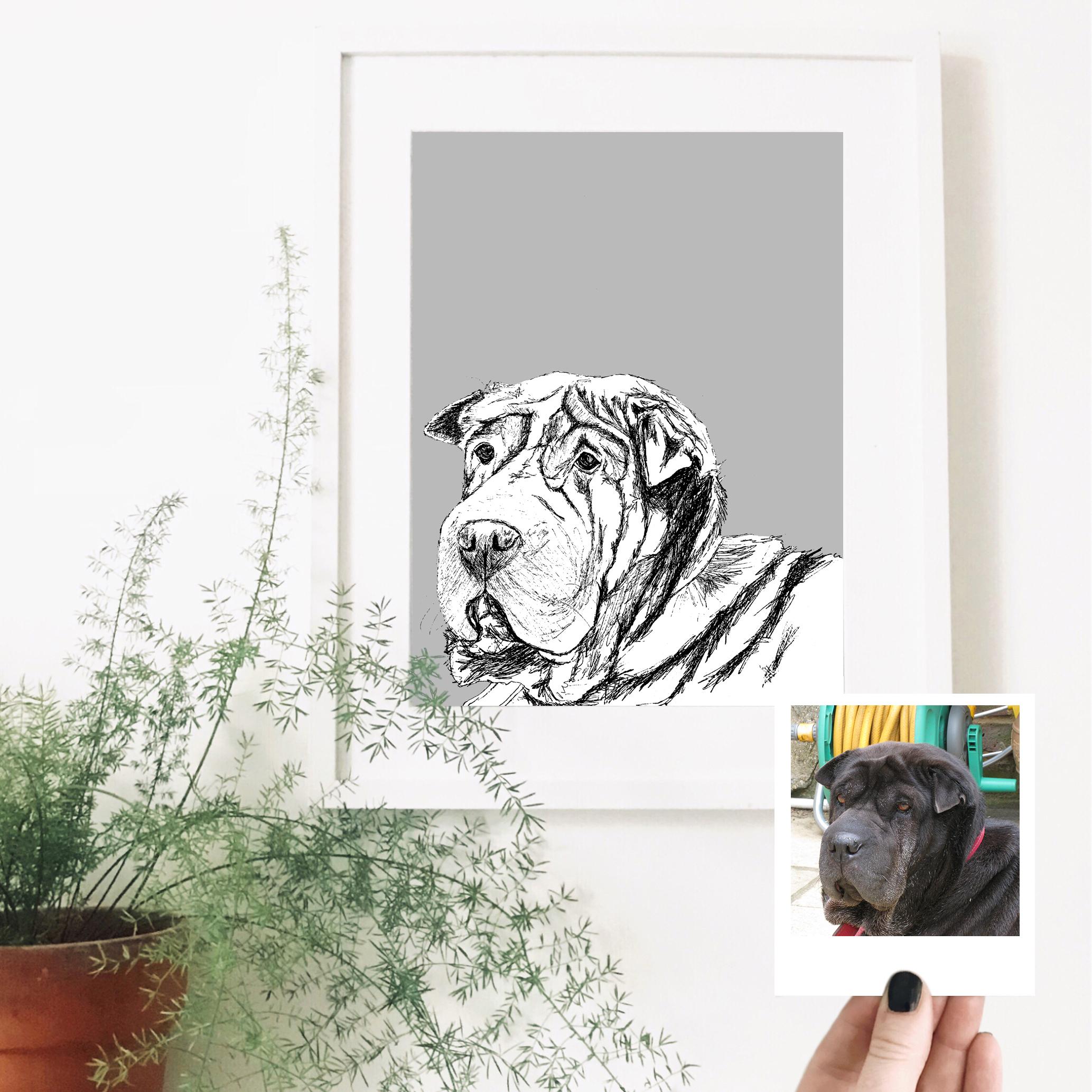 cass-dog-pet-portrait-drawing.jpg