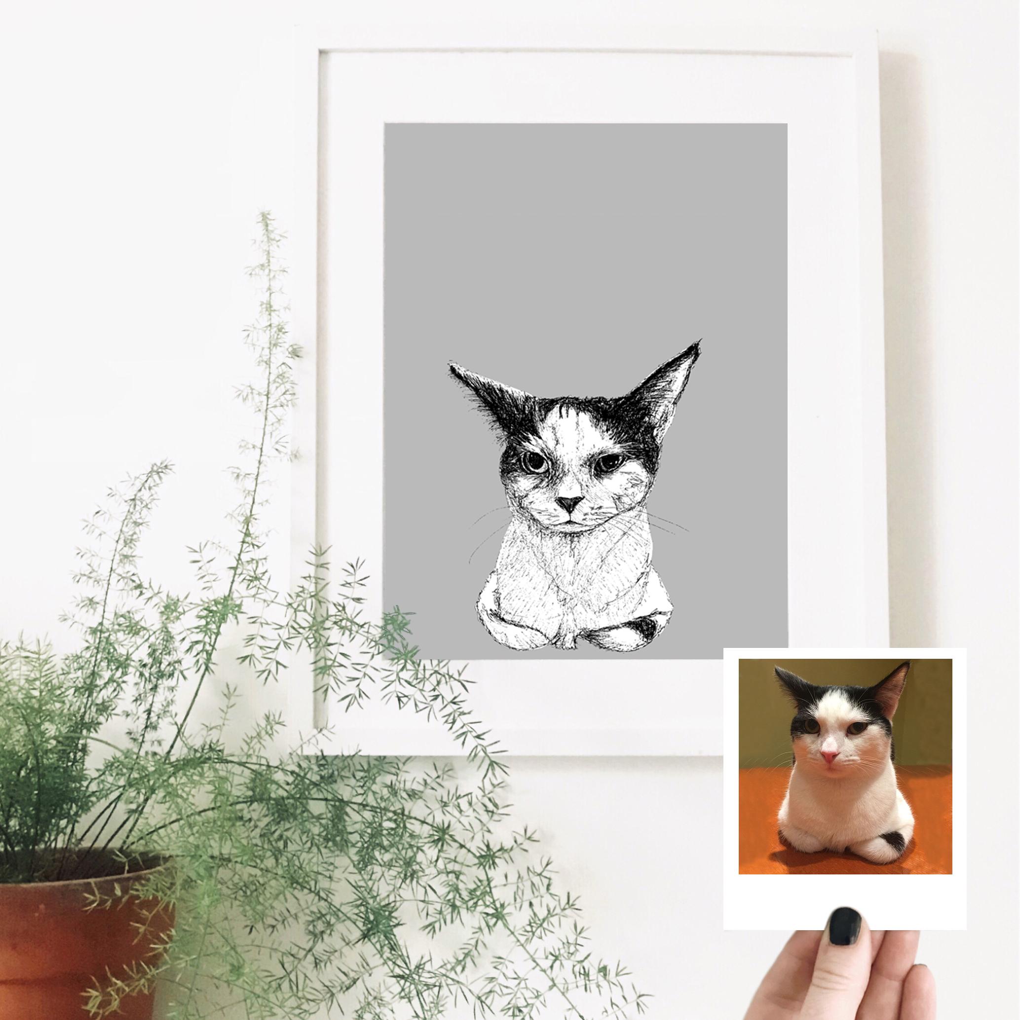cat-pet-portrait-drawing.jpg