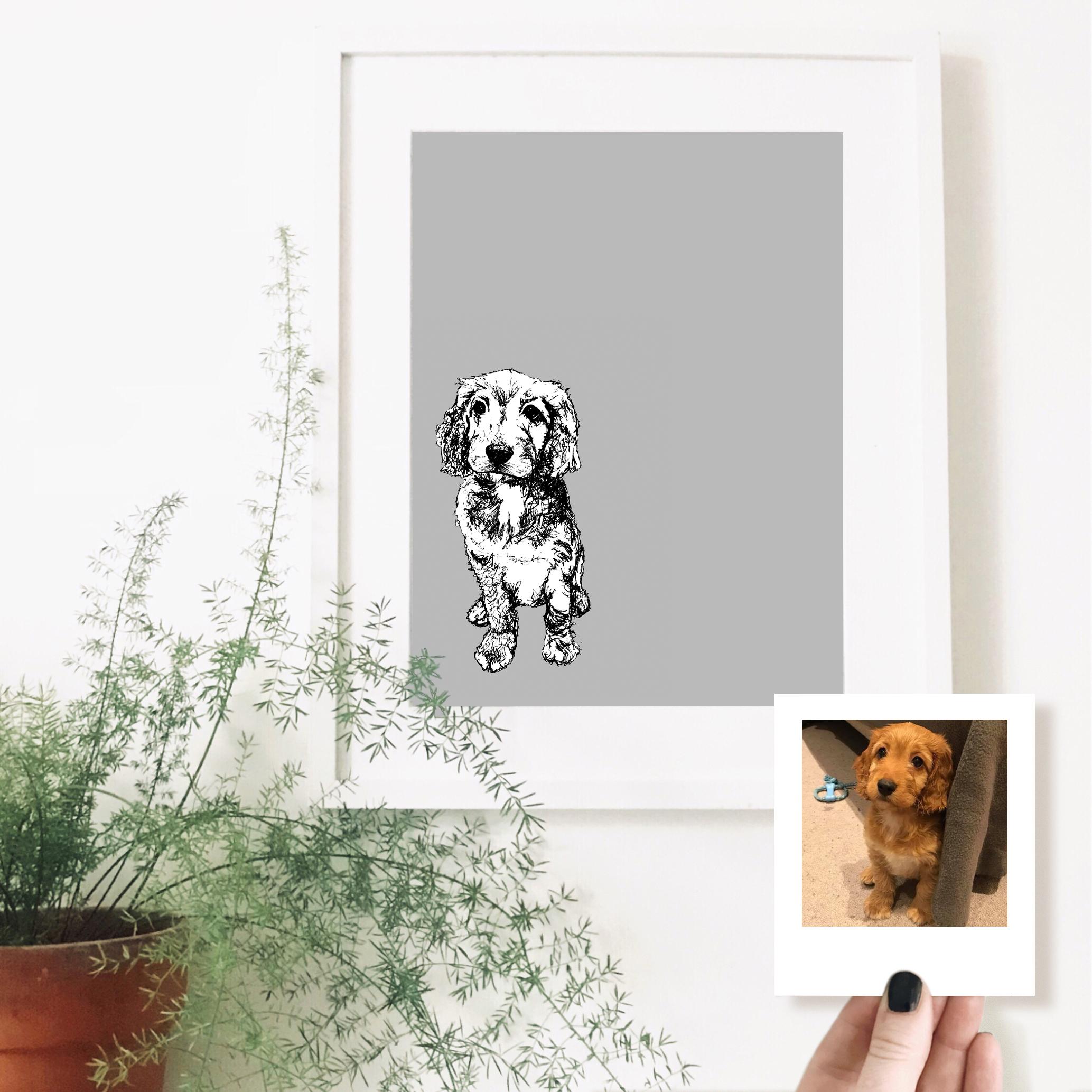 cavapoo-dog-pet-portrait-drawing.jpg