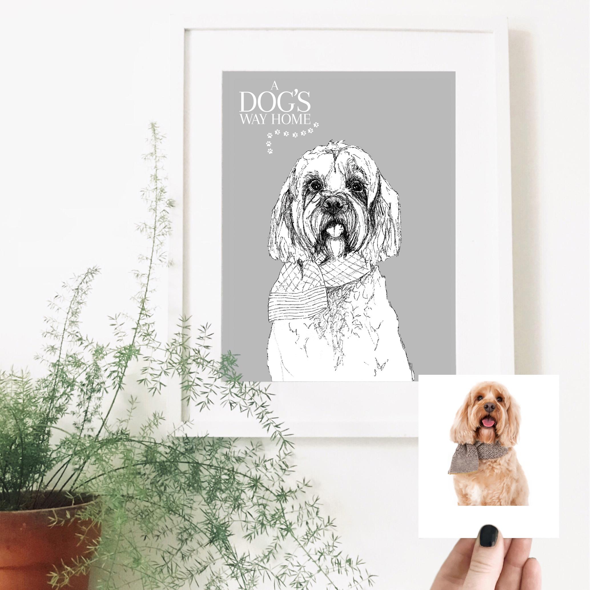 darcy-dog-pet-portrait-drawing.jpg