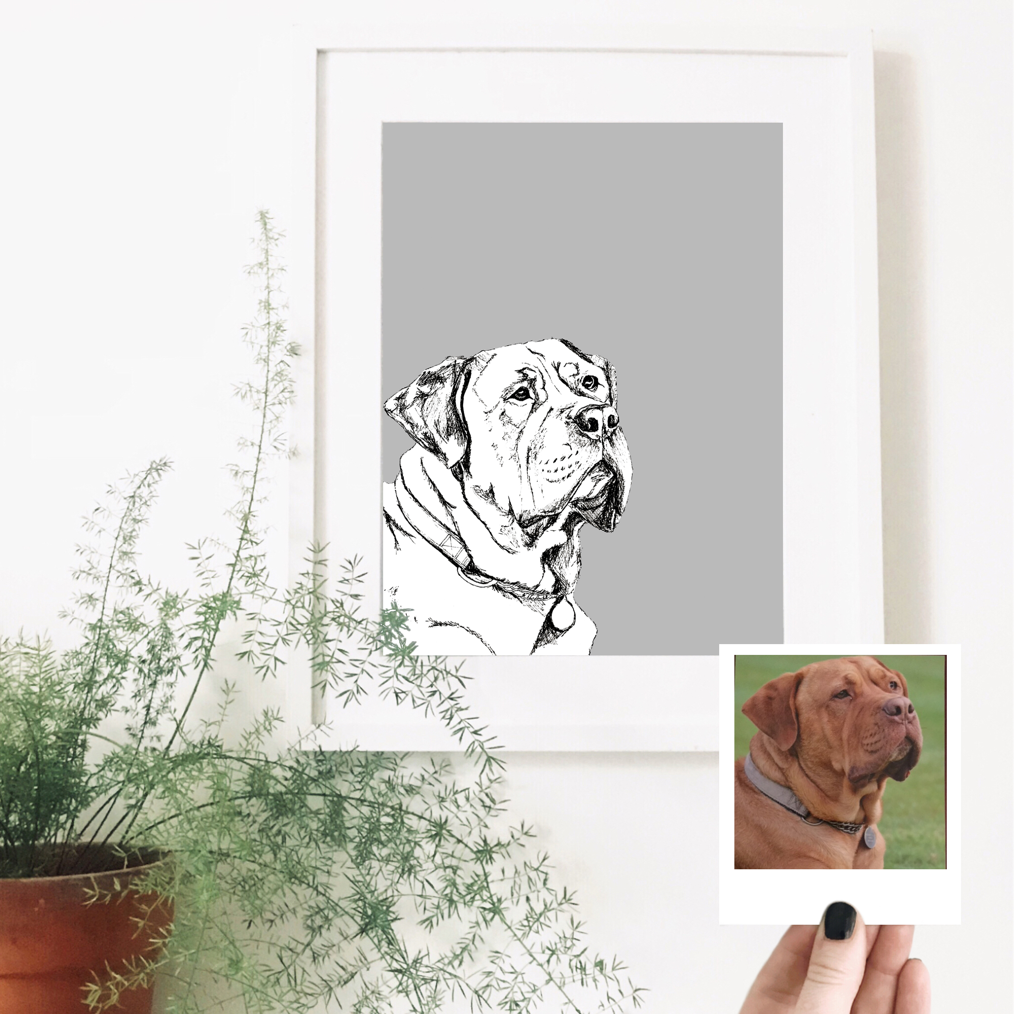 dog-pet-portrait-art.jpg
