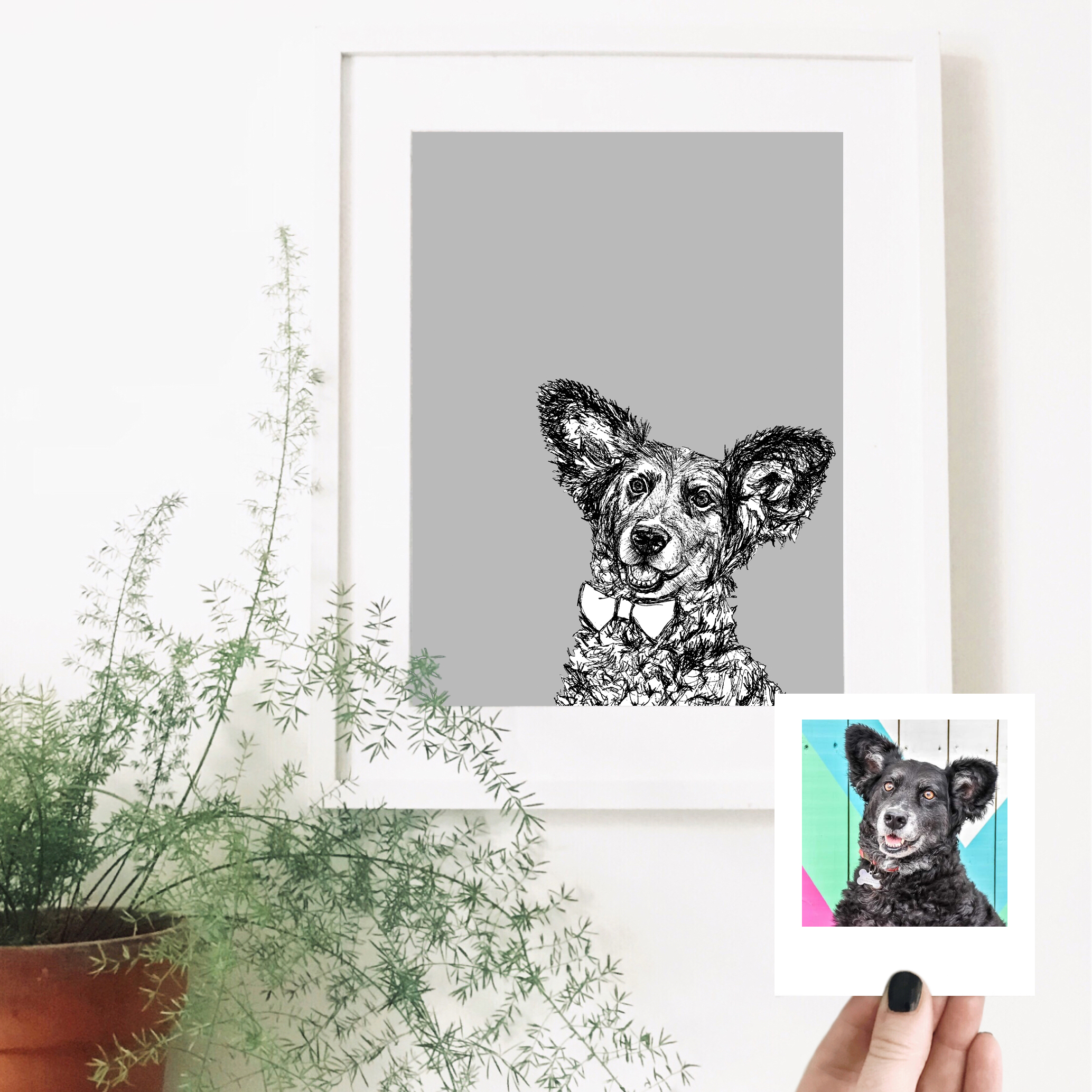 dogvine-dog-pet-portrait.jpg