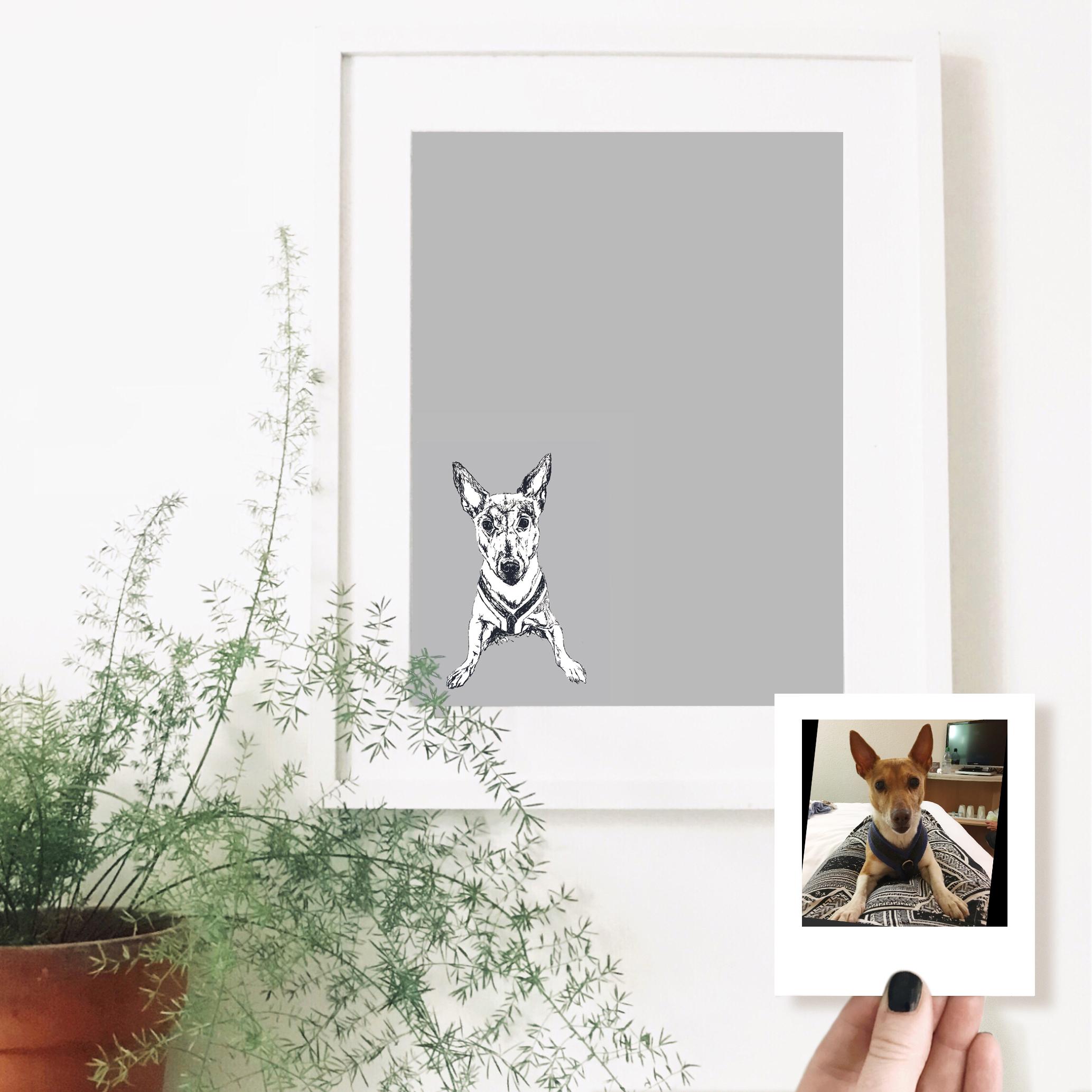 fay-dog-pet-portrait-drawing.jpg