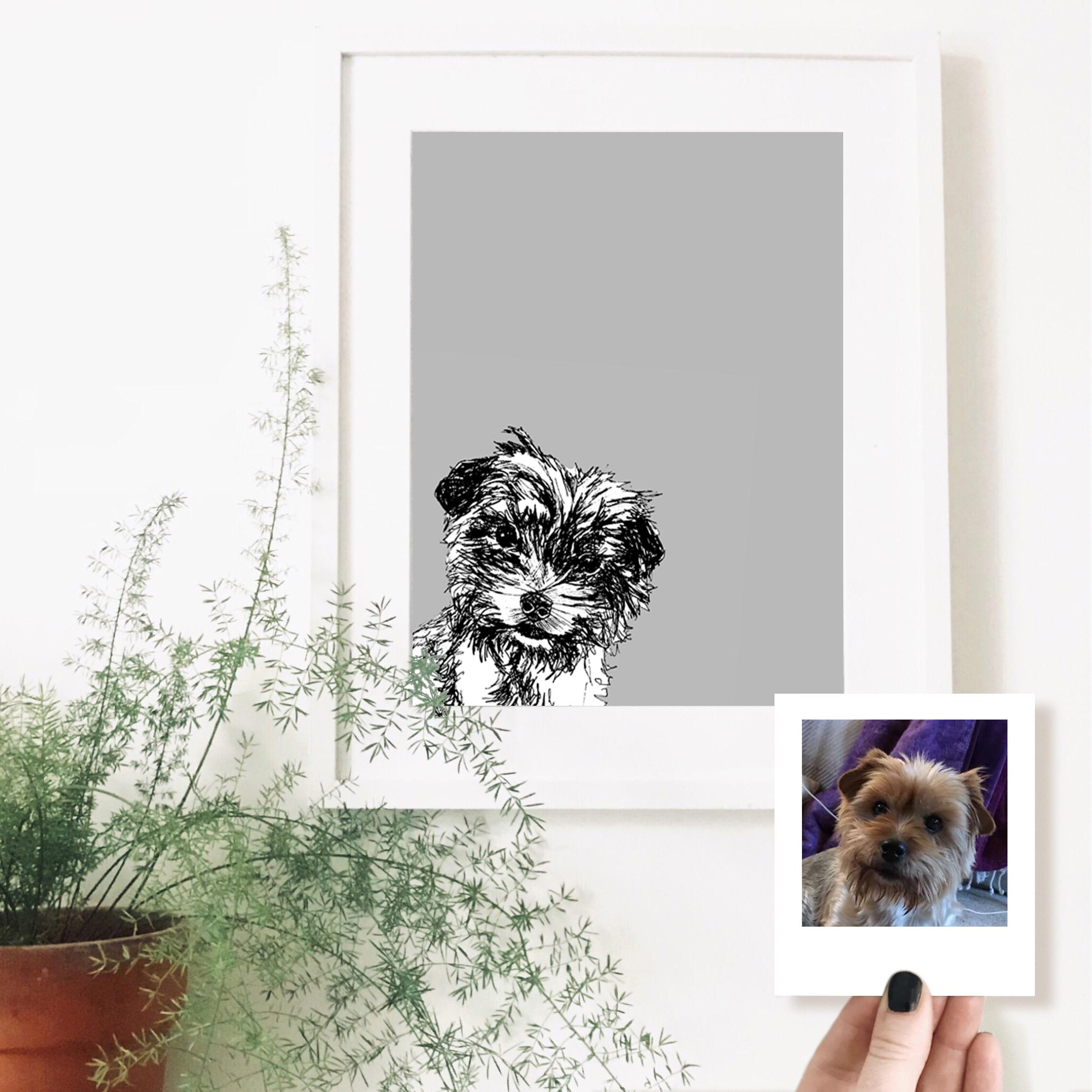 francesca-dog-pet-portrait-drawing.jpg