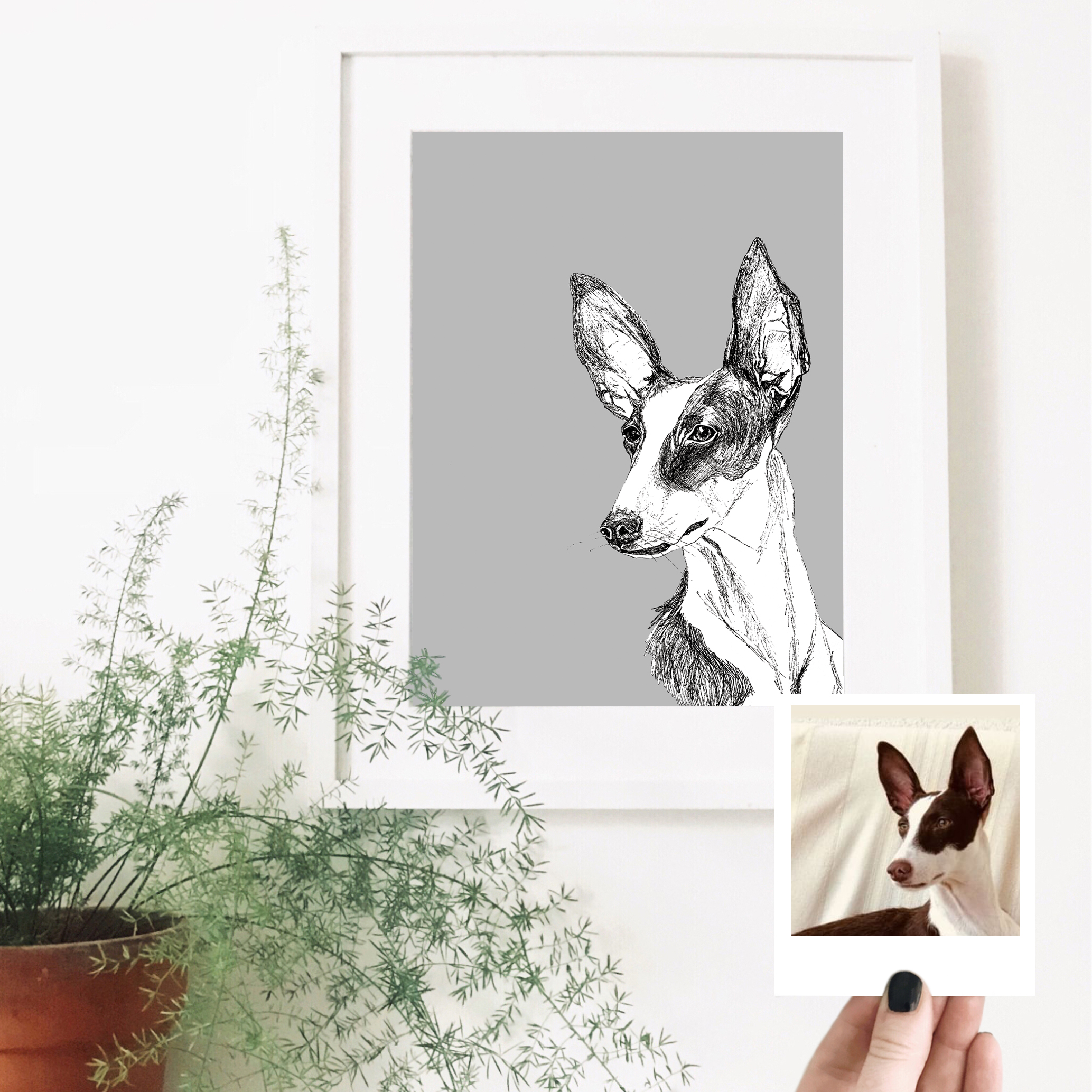 kodak-dog-pet-portrait-drawing.jpg
