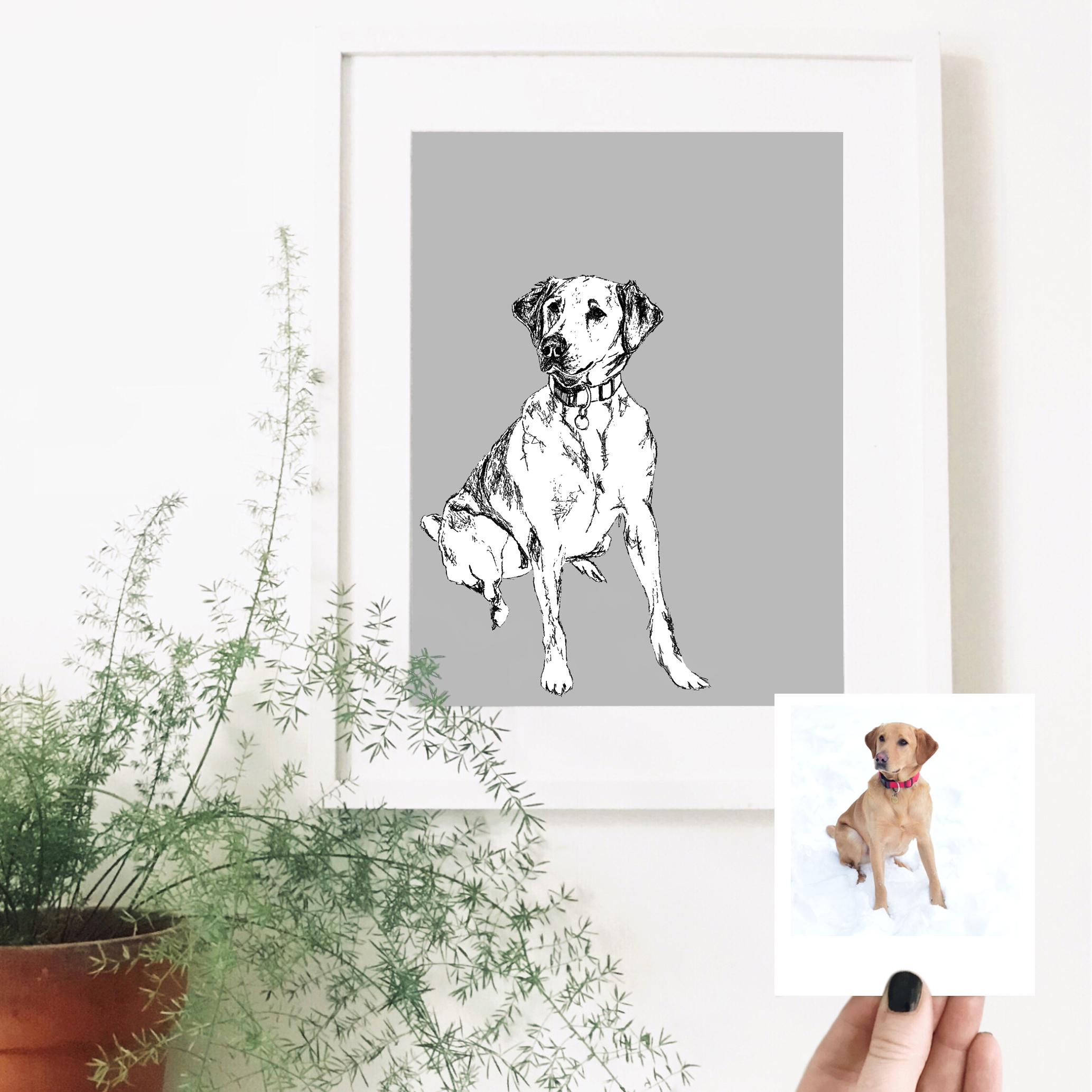 labrador-dog-pet-portrait-drawing.jpg