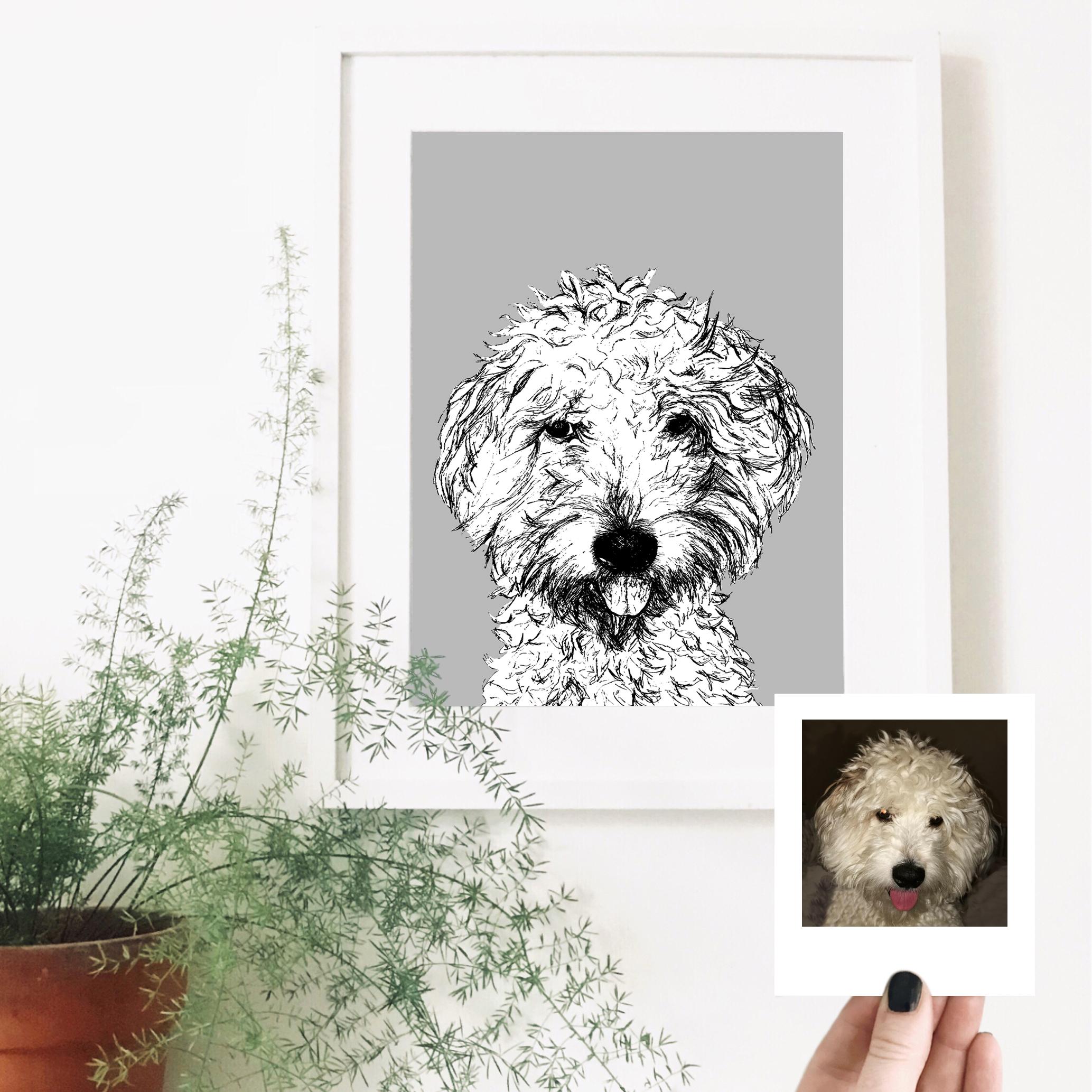maggie-dog-pet-portrait-drawing.jpg