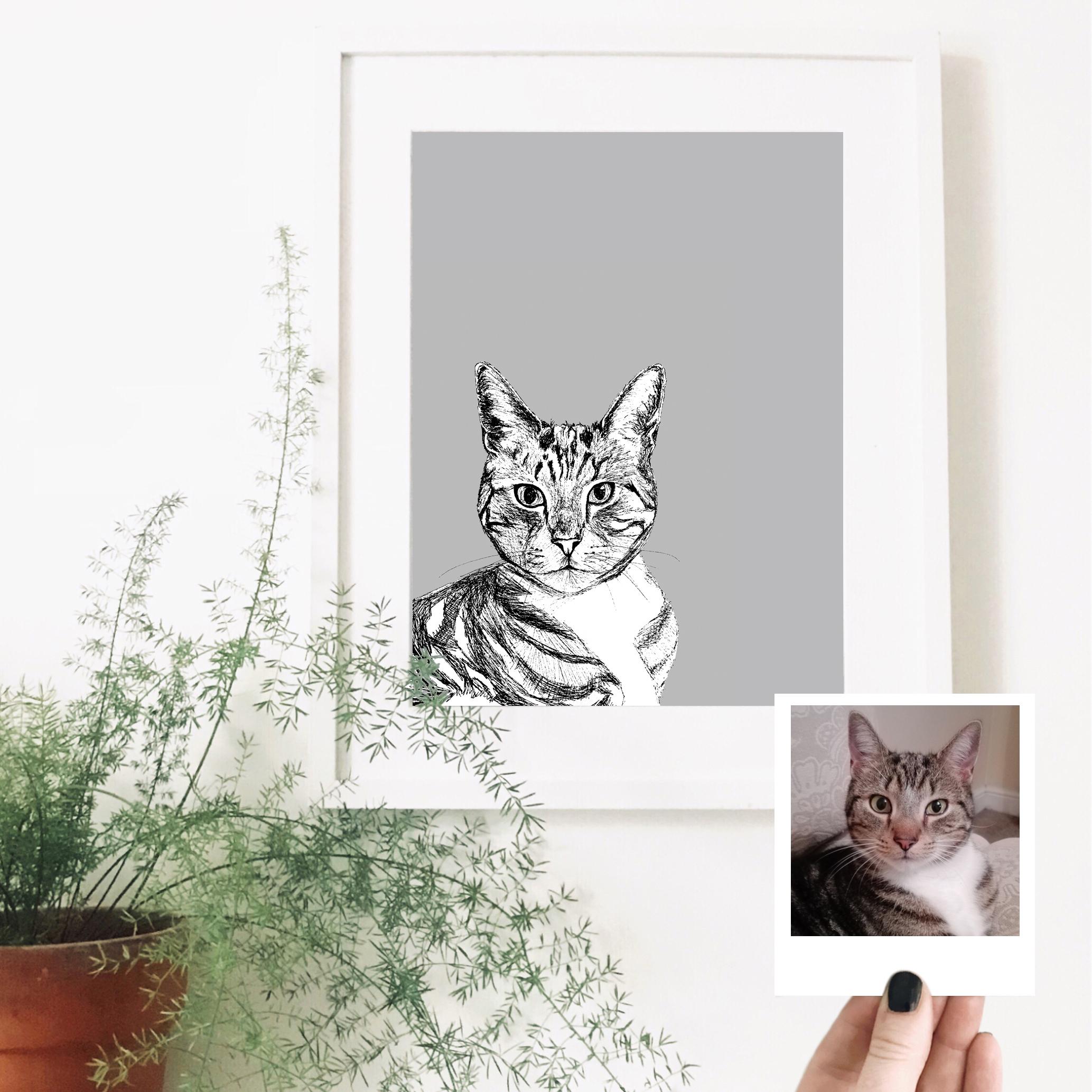 mr-tibbs-cat-pet-portrait-drawing.jpg