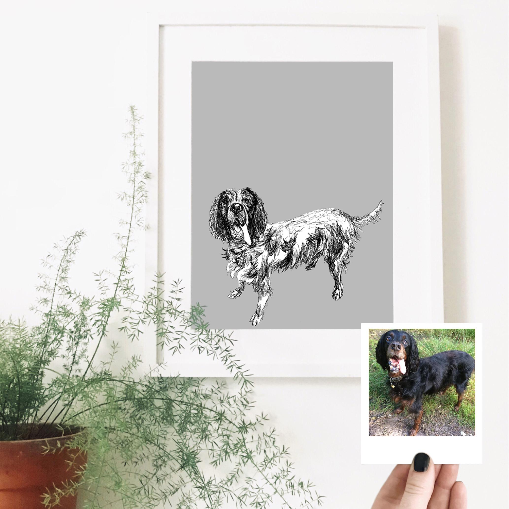 nick-dog-pet-portrait-drawing.jpg