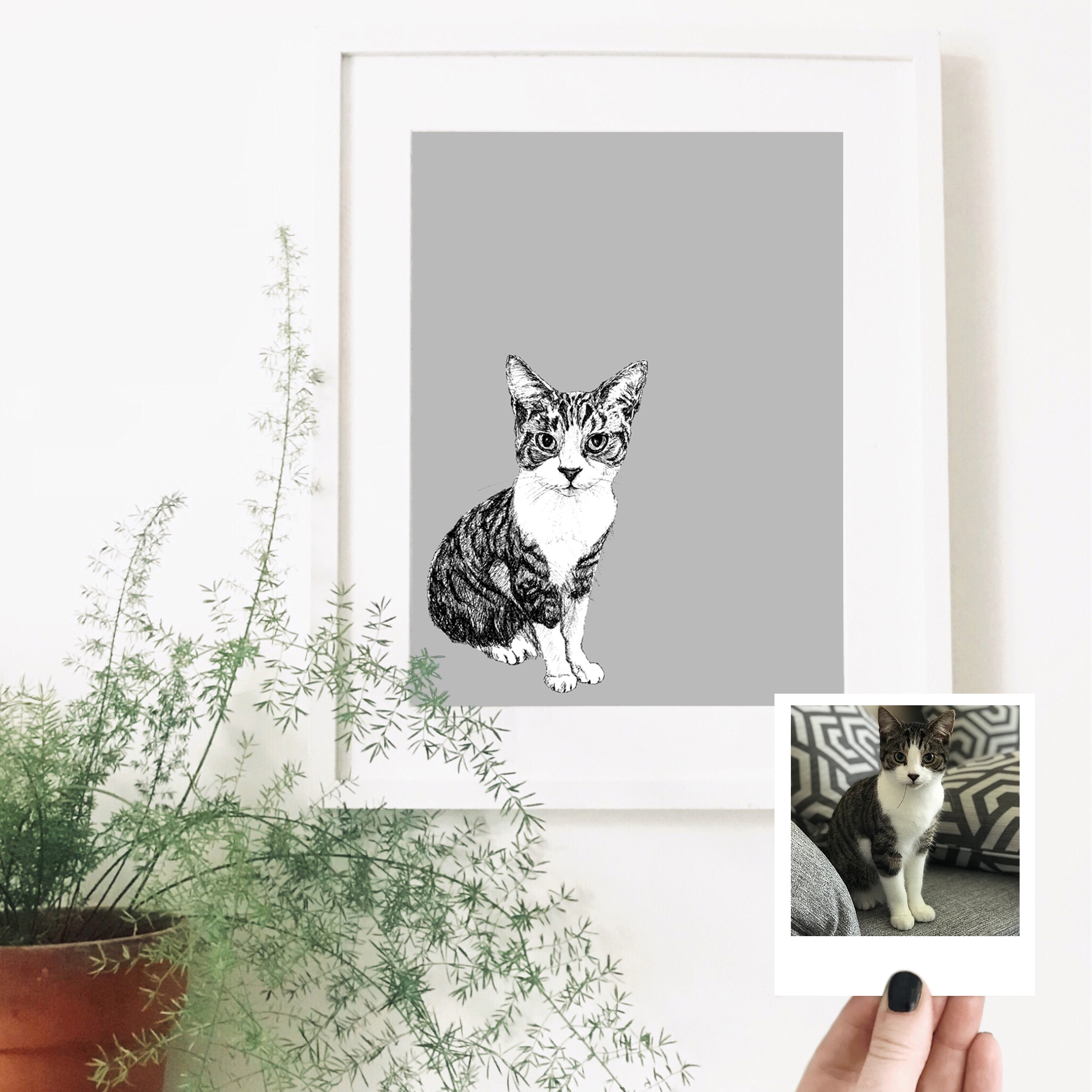 nigel-cat-pet-portrait-drawing.jpg