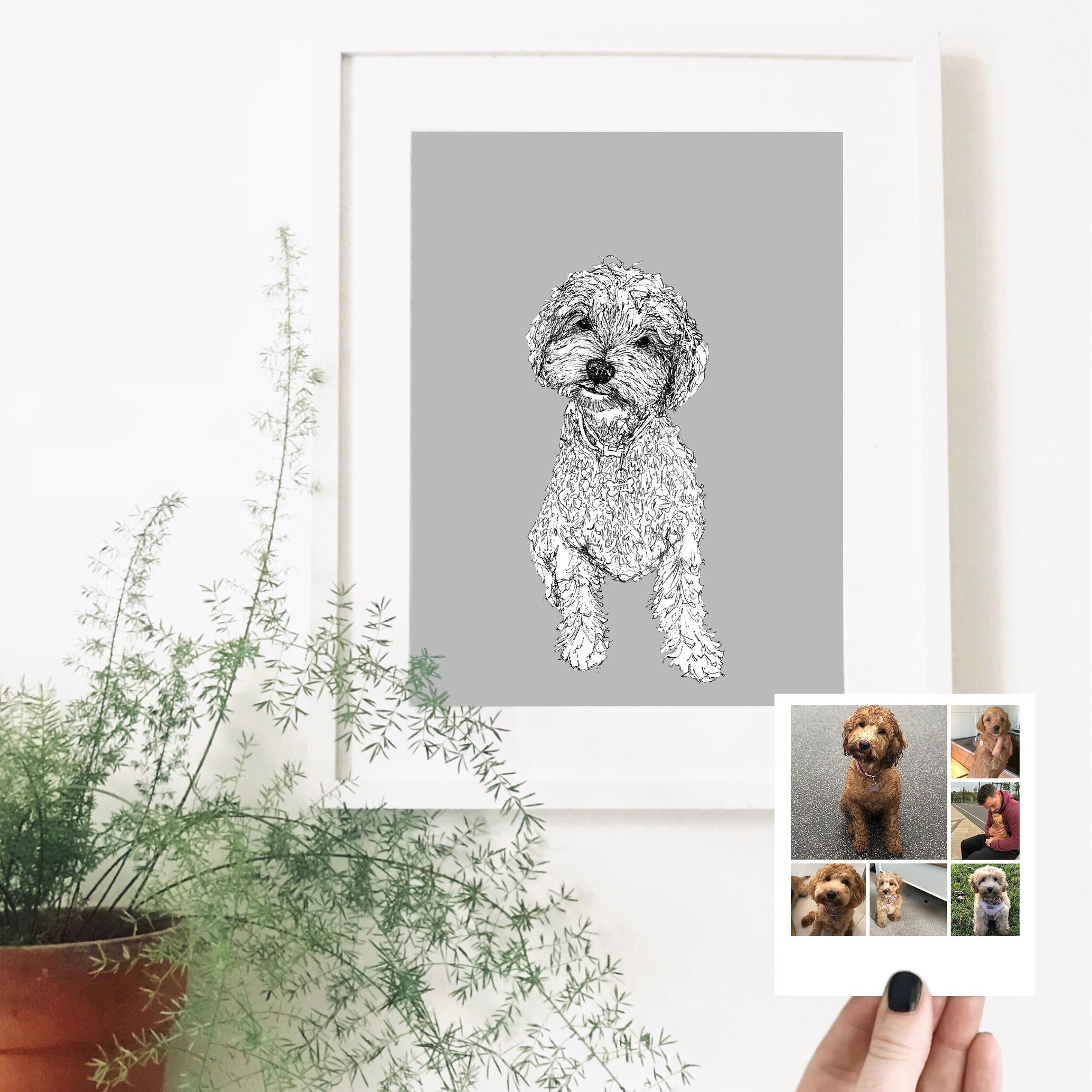 poppy-dog-pet-portrait-drawing.jpg