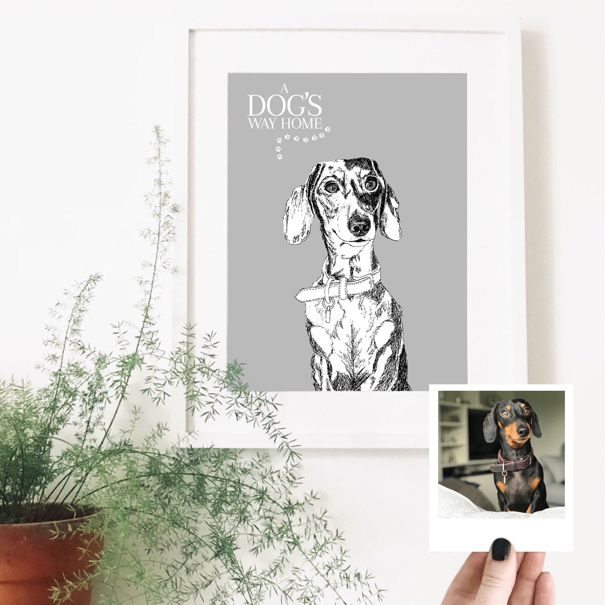 sausage-dog-dog-pet-portrait-drawing.jpg
