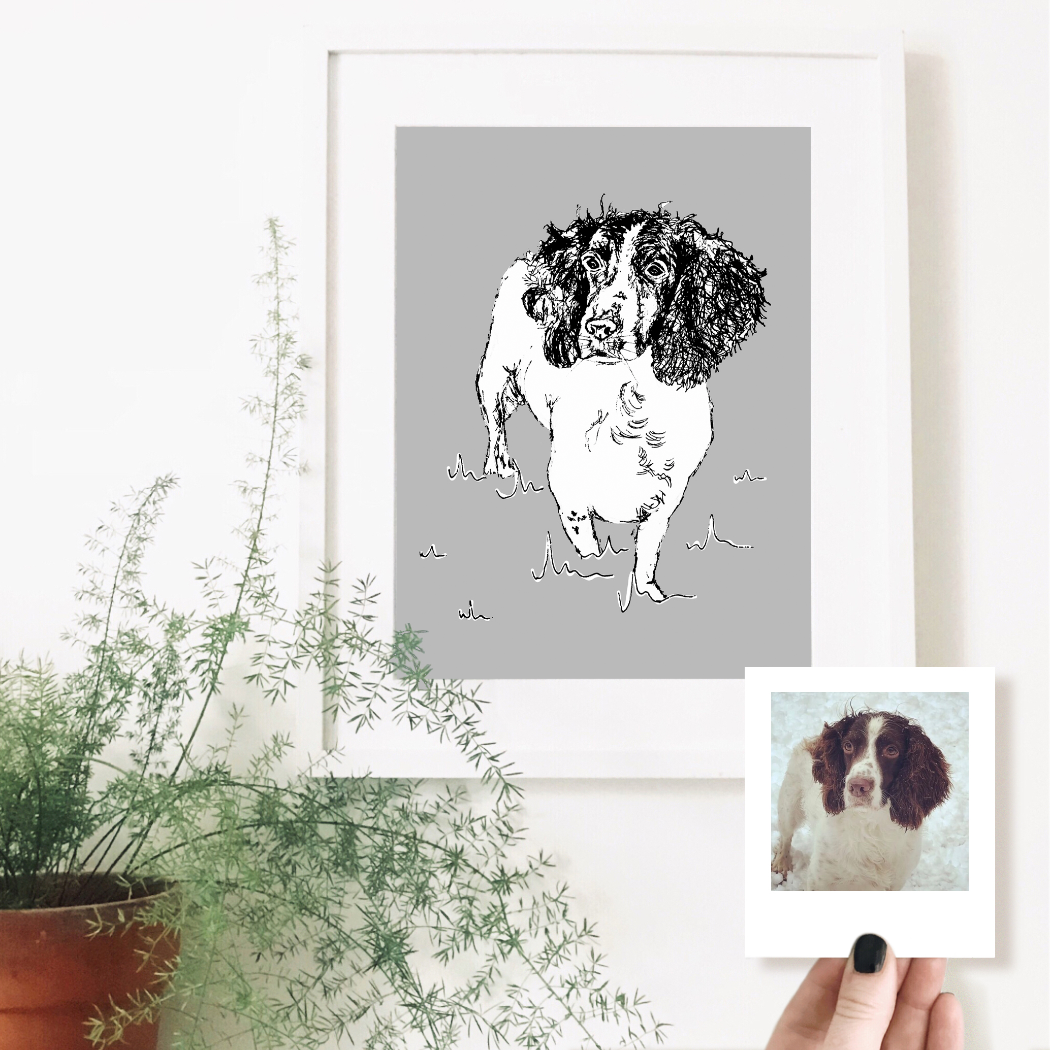 spaniel-dog-pet-portrait-drawing.jpg