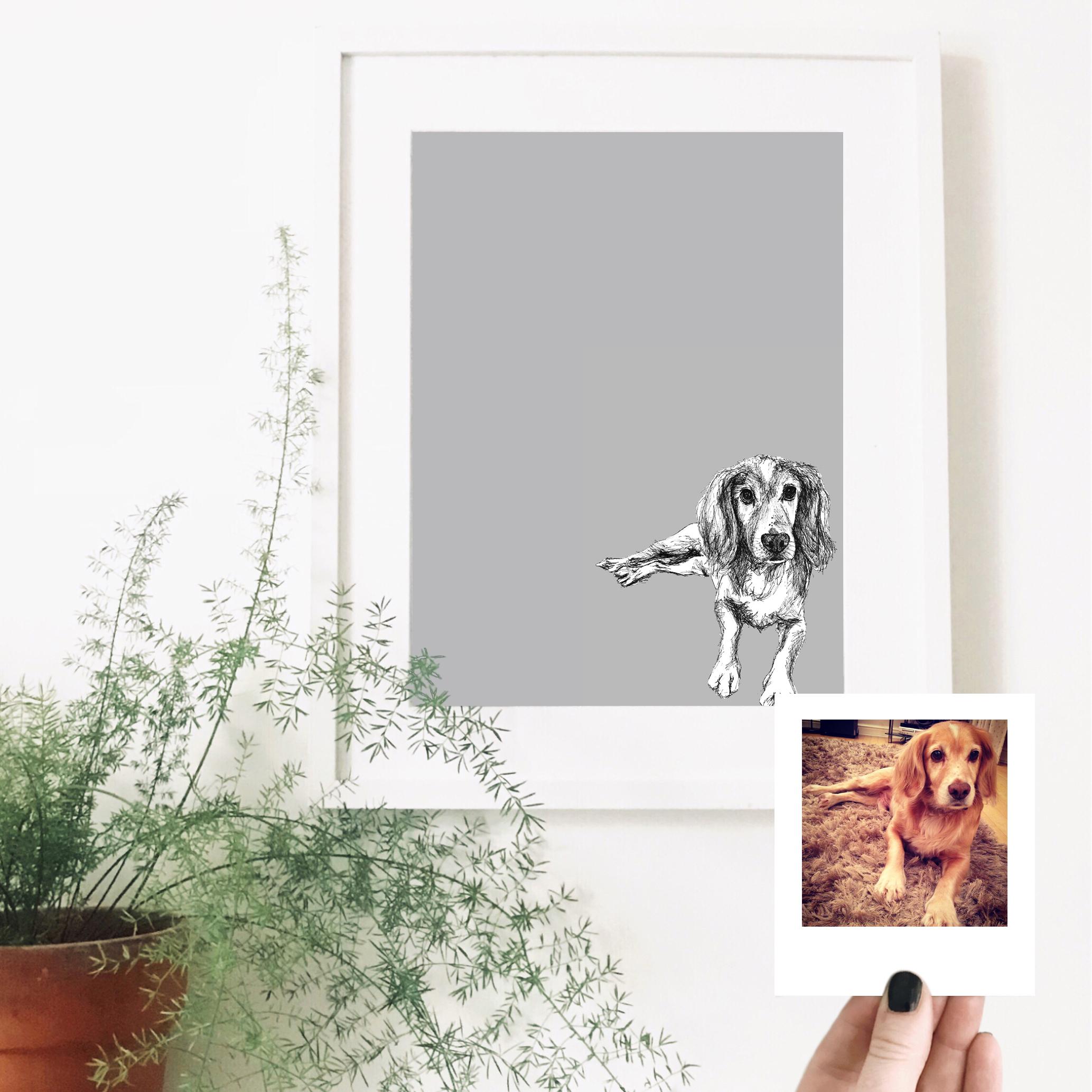 toby-dog-pet-portrait-drawing.jpg