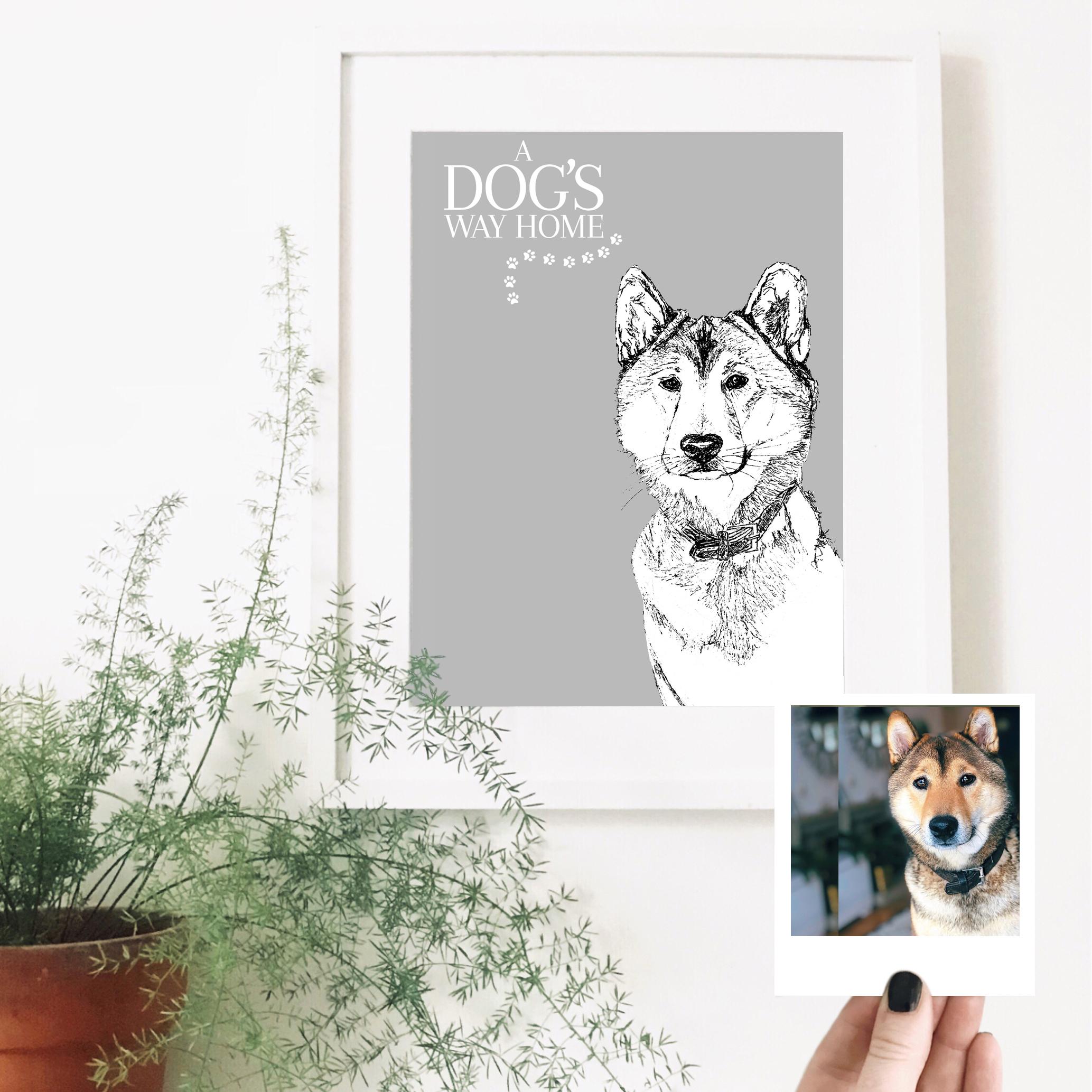 a-dogs-life-dog-pet-portrait-drawing.jpg