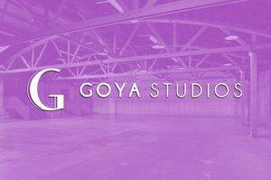 [Goya_Cover].jpg