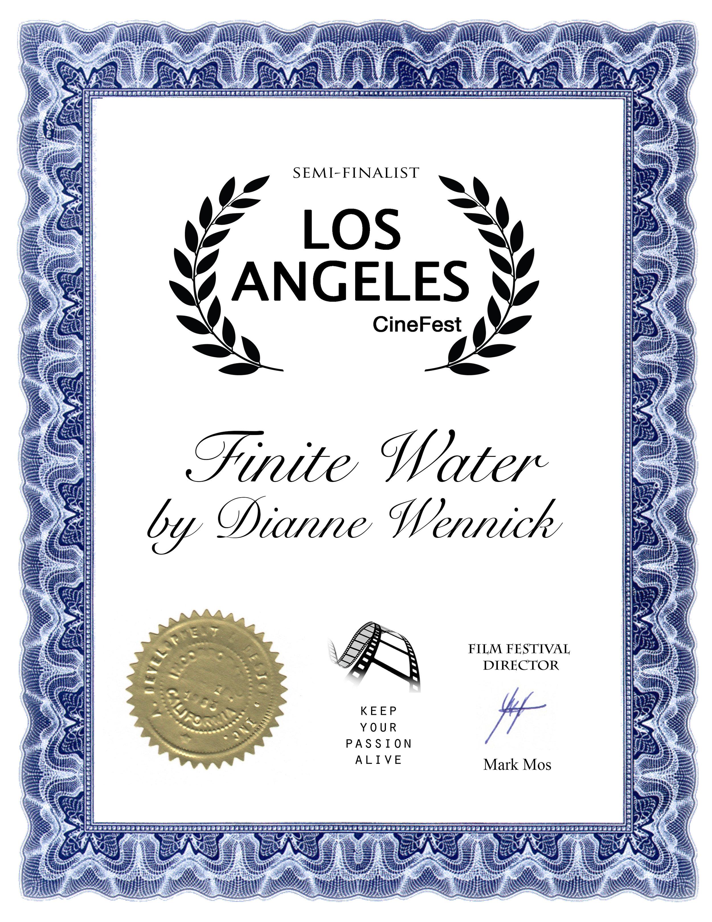 Finite Water Dianne Wennick.jpg