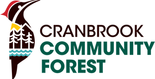 CCF Final Logo.png