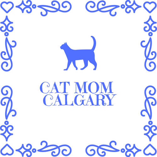 cat mom calgary - Find out about my cat sitting services, booking me, and arranging a new client meet and greet.