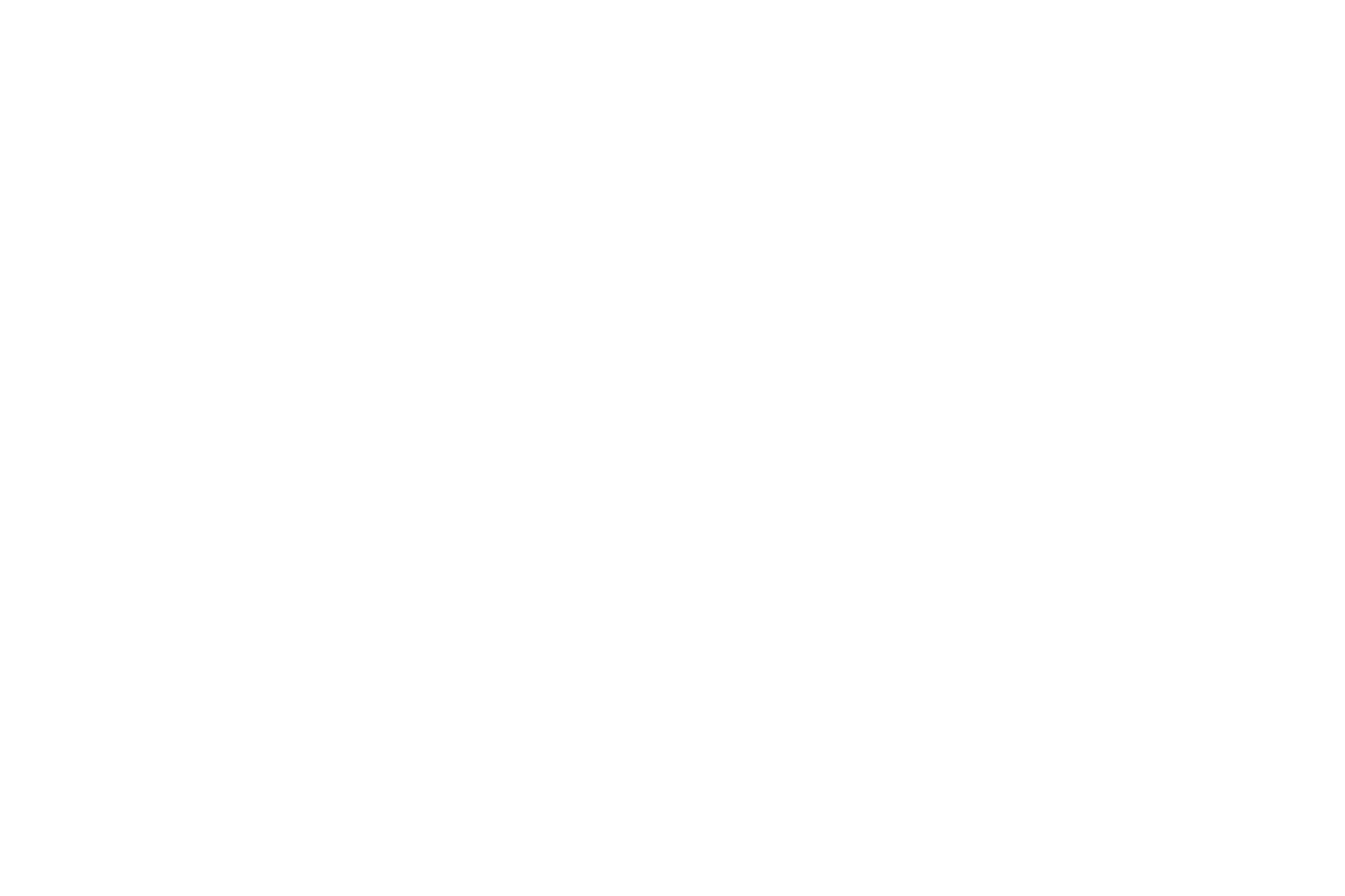 PLUR Angels_PNGs-02.png