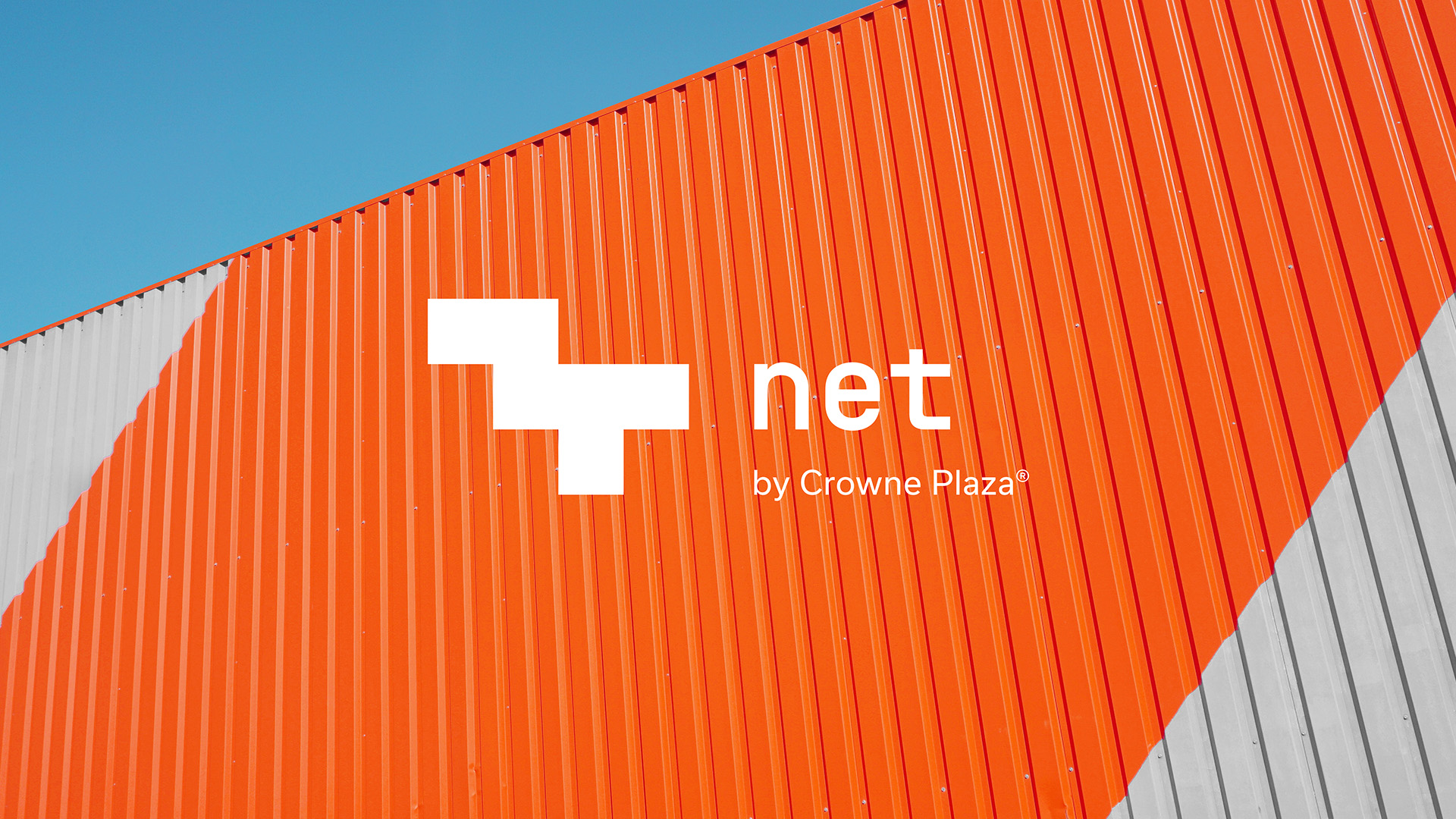 Net_01.jpg