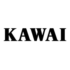 Kawai_1.jpg