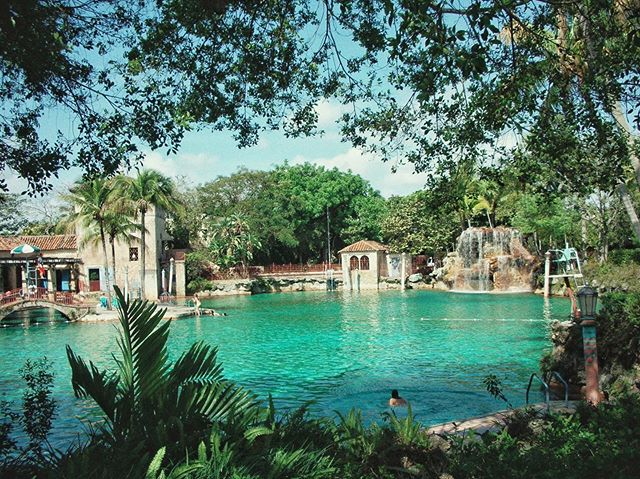 things to do: find this grotto ASAP in Miami to swim in🦎🐬