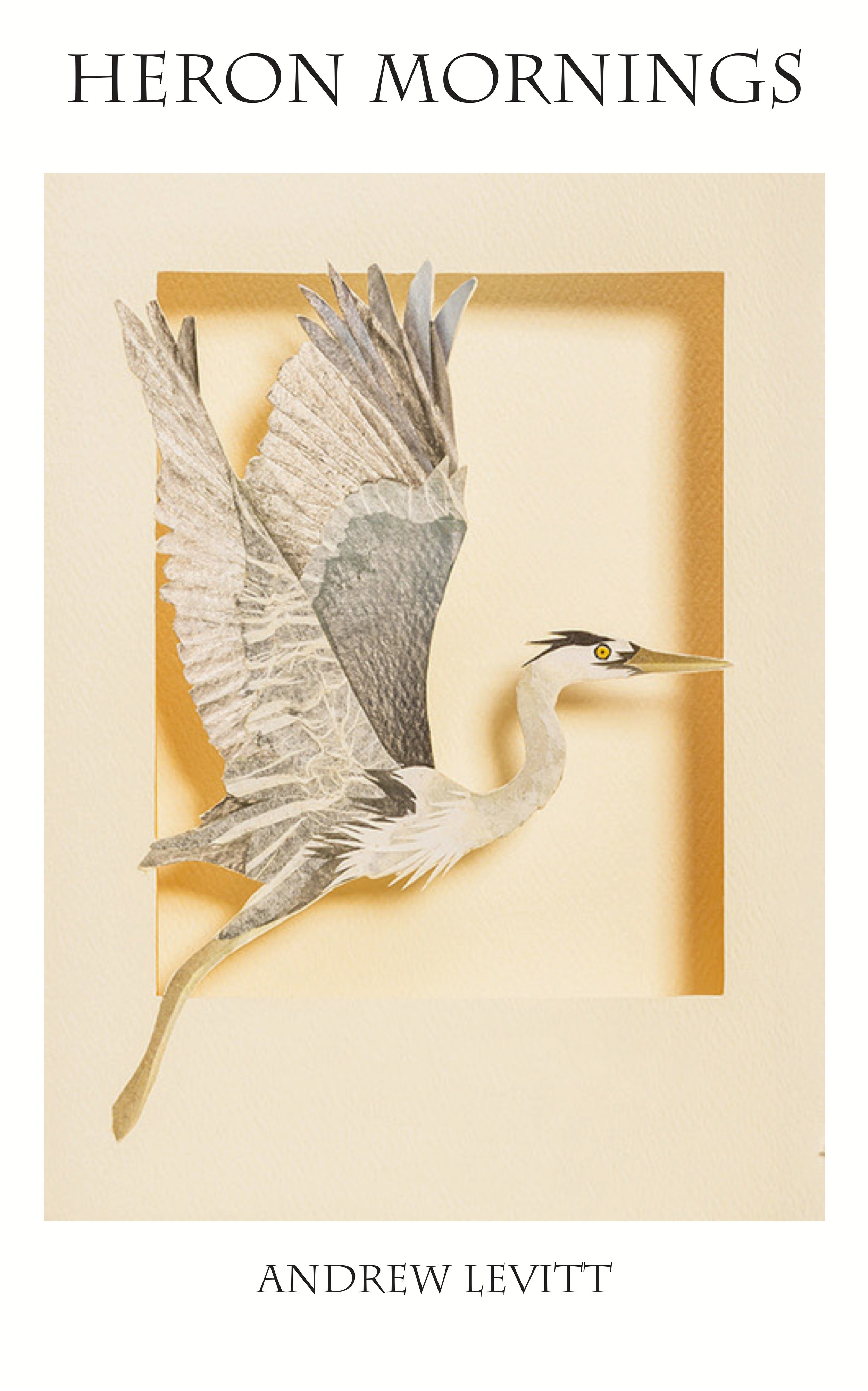 3c5. Heron Mornings Front Cover, needs cropping.jpg