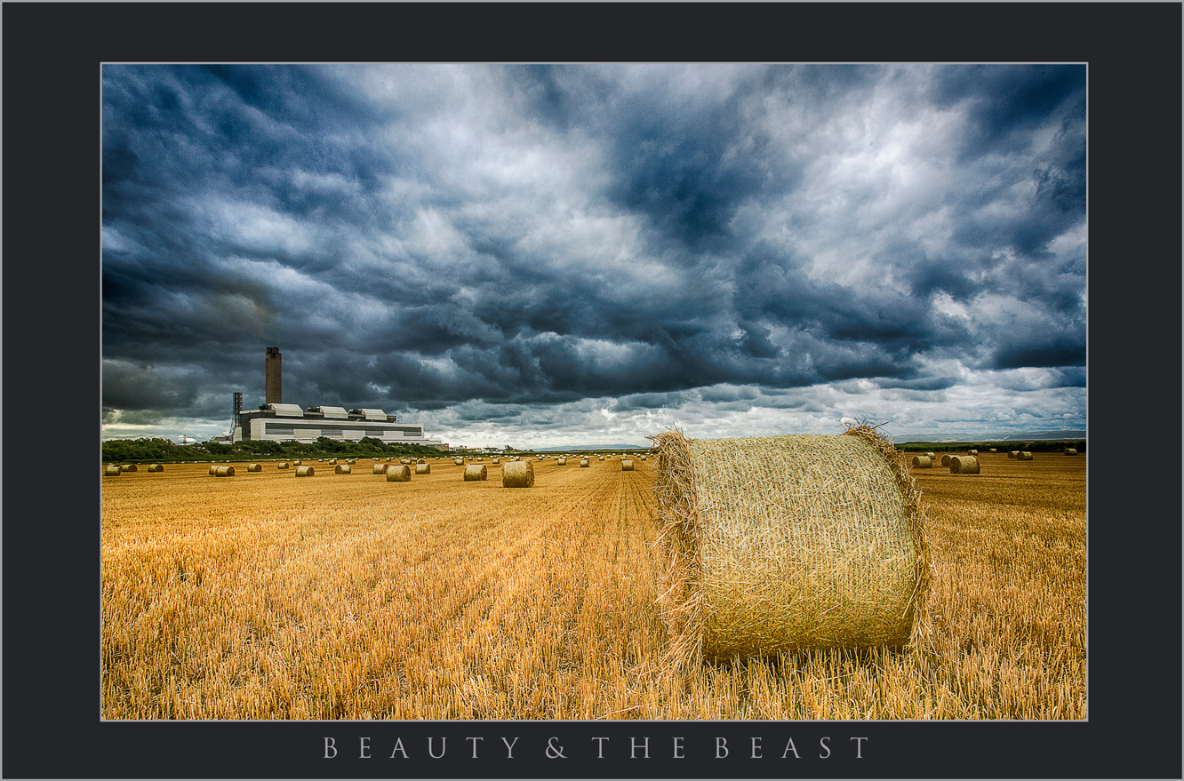 BEAUTY AND THE BEAST;LANDSCAPE PHOTOGRAPHY IN VALE OF GLAMORGAN; IMAGES OF THE VALE OF GLAMORGAN; VALE BEACHES; WALES COASTAL PATH; SOUTH WALES LANDSCAPE PHOTOGRAPHY.jpg