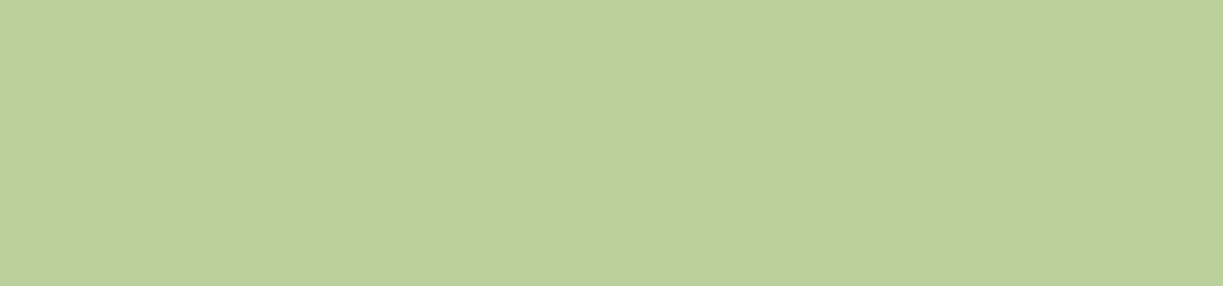 Bandeau vert.jpg