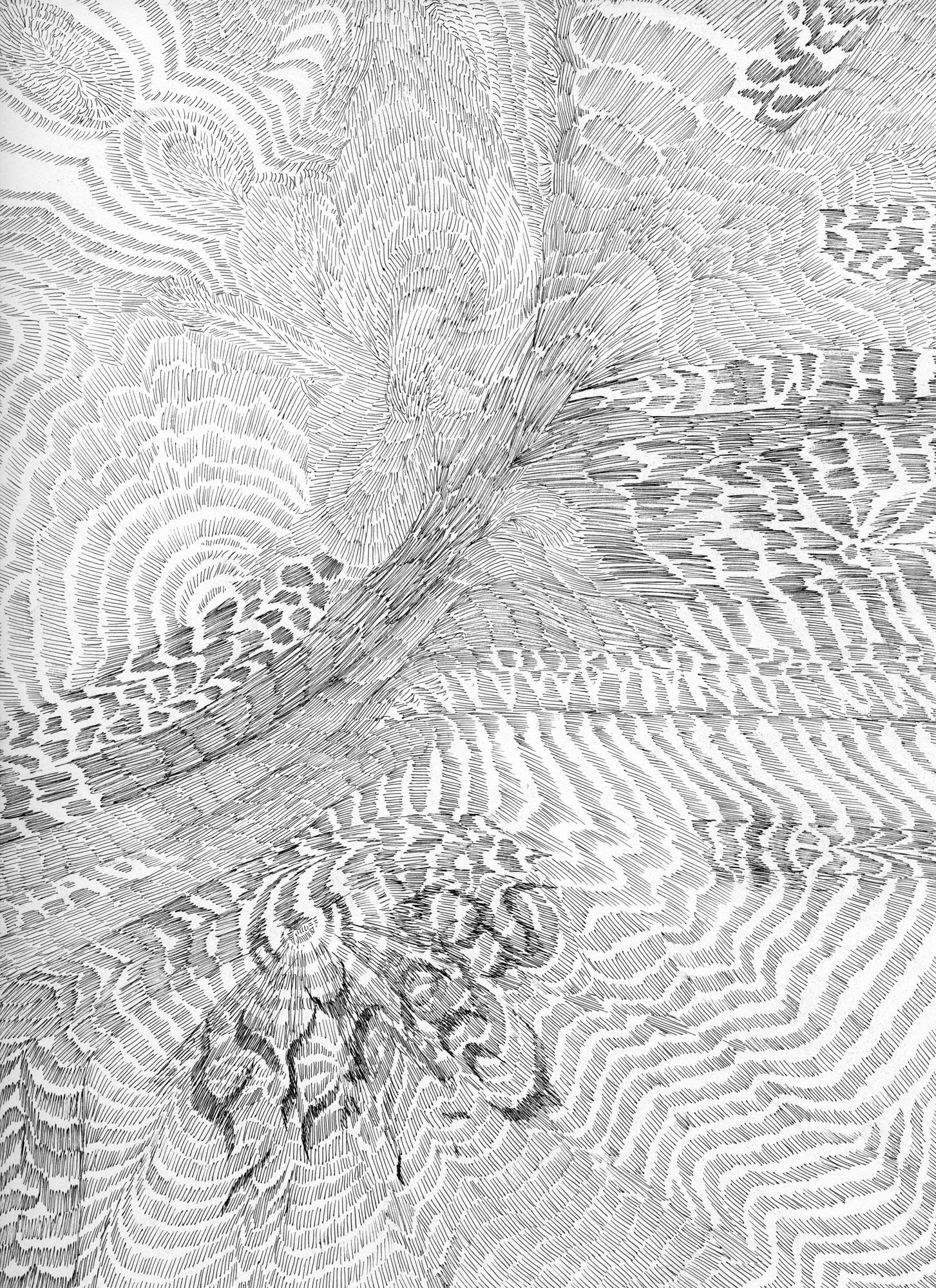 Untitled (Flux 04.30),  2019 Ink on paper 30.4 cm x 22.8 cm