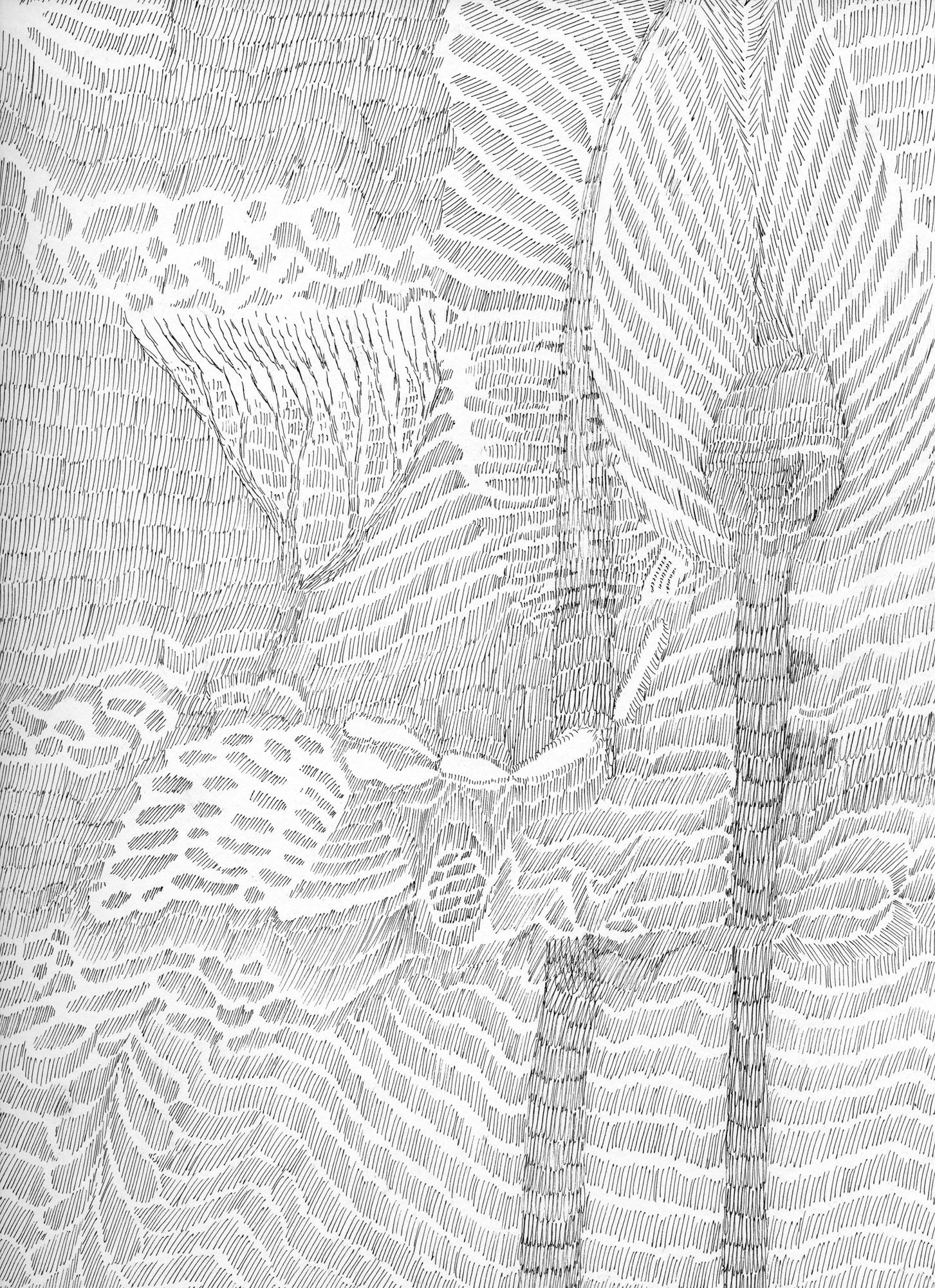 Untitled (Flux 05.21) , 2019 Ink on paper 30.4 cm x 22.8 cm