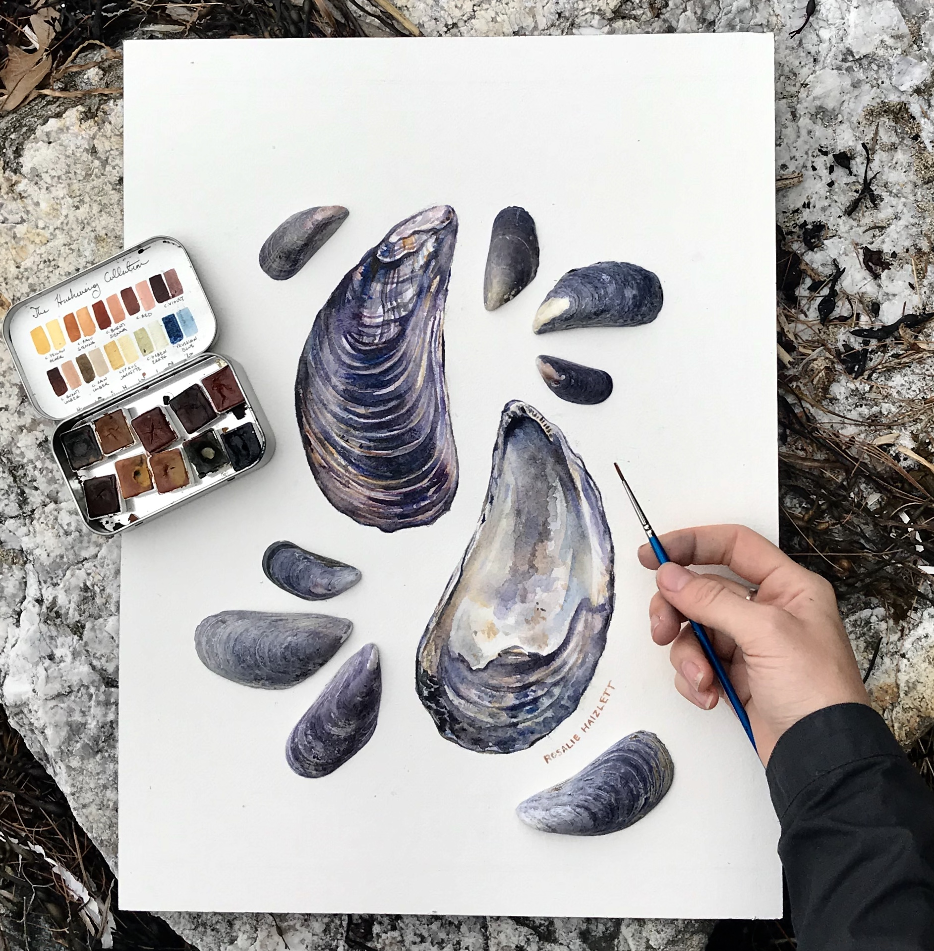 Blue mussels!