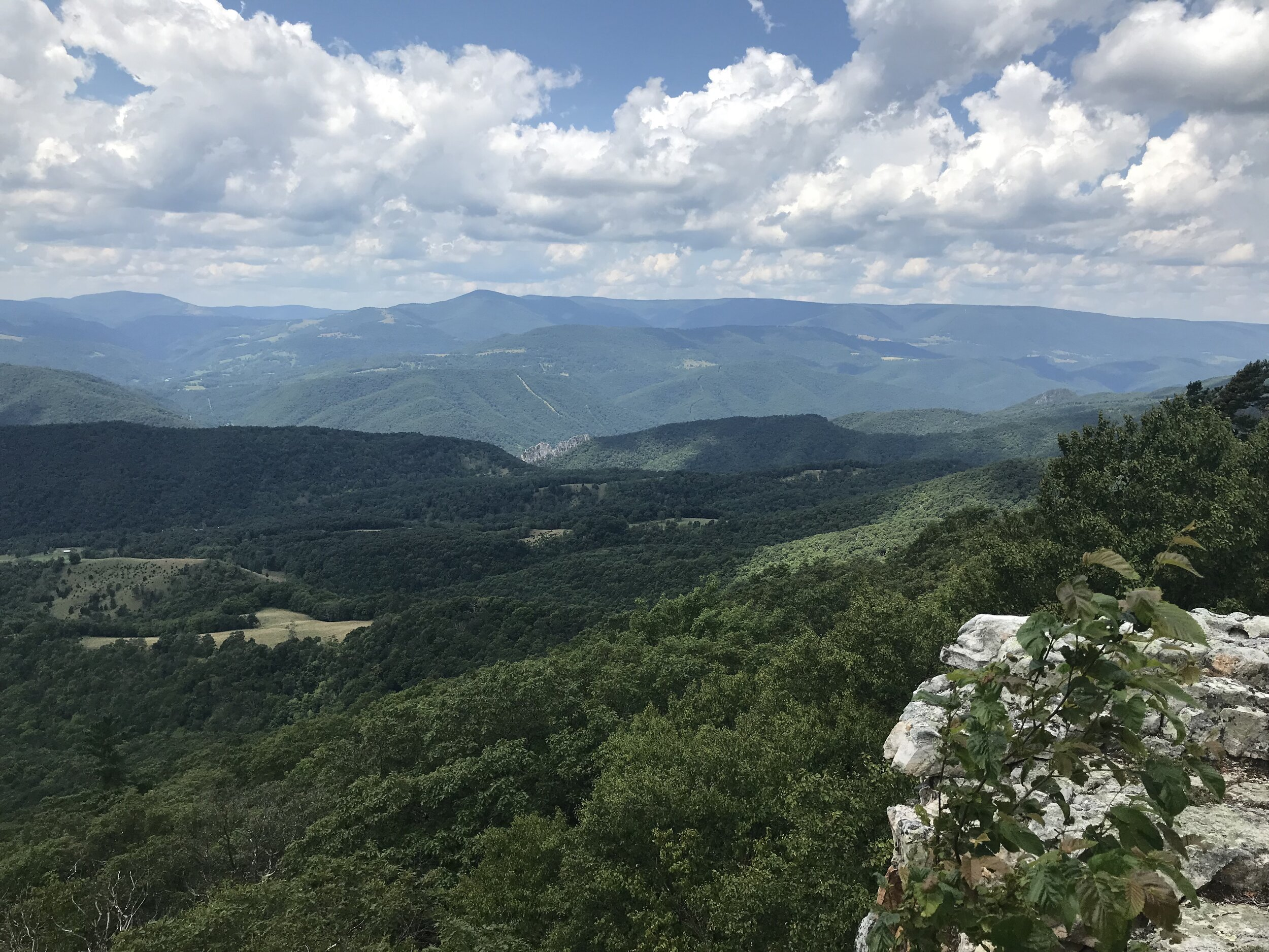 One of the views from the ridge on North Fork Mountain Trail