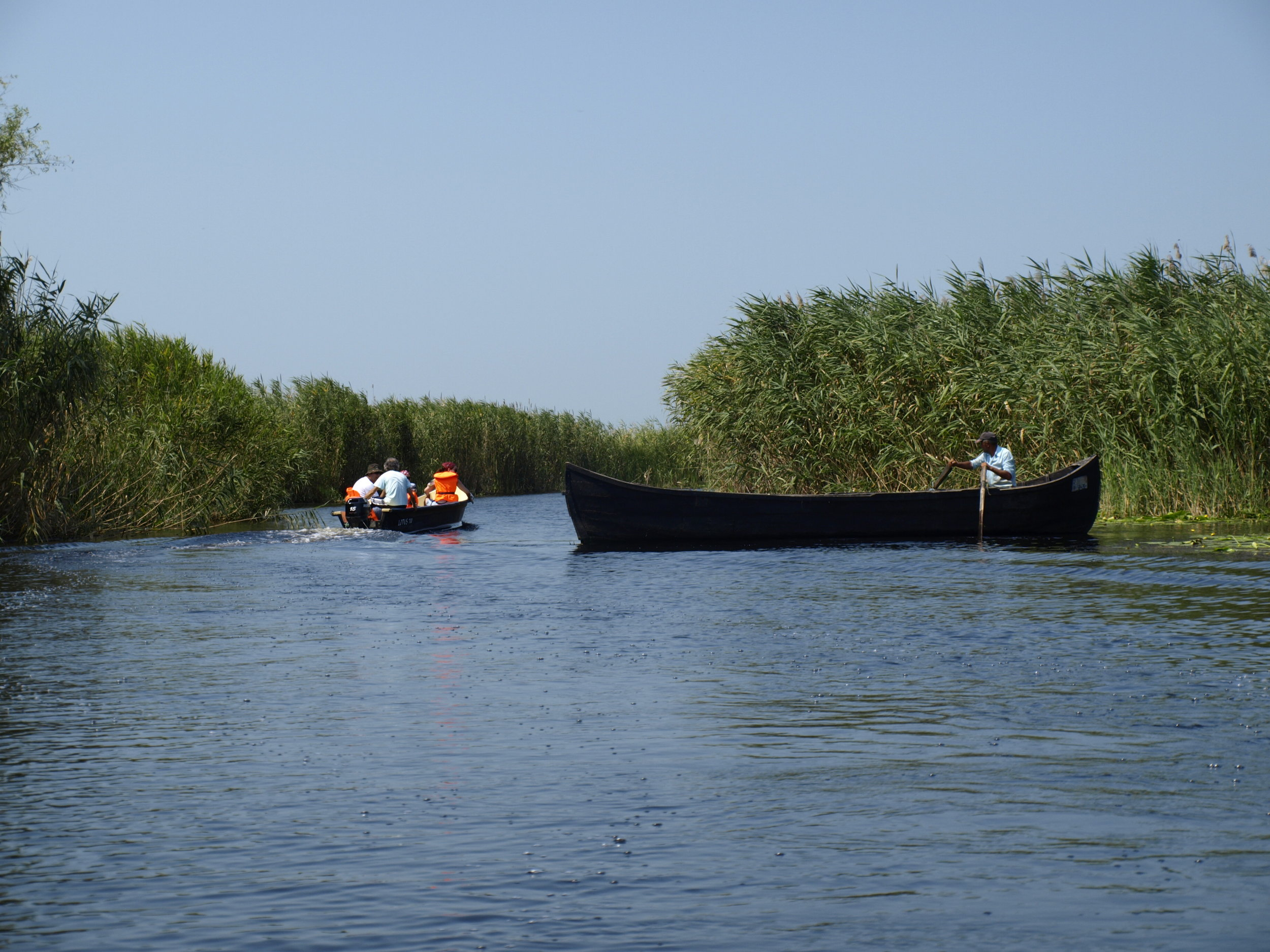 Boat trips in the wild areas of the Delta - Chilia Veche is the most important starting point for any major expedition in the North side of the Delta. Laying at a short distance to the village by boat, the impressive Letea Natural Reserve is waiting for you to discover its amazing tropical looks. Prepare for a walk along trees more than 500 years old, Mediterranean plants surrounded by sand dunes and home to a real paradise of tortoises, lizards and wild horses. Access to Letea Forest is permitted only with a guide on designated routes.