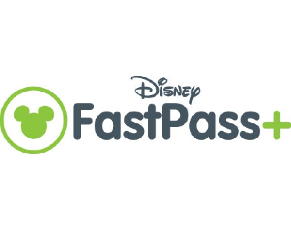 Disney's FassPass and VacaDUN baby equipment rentals in Anaheim are perfect family trip savers!
