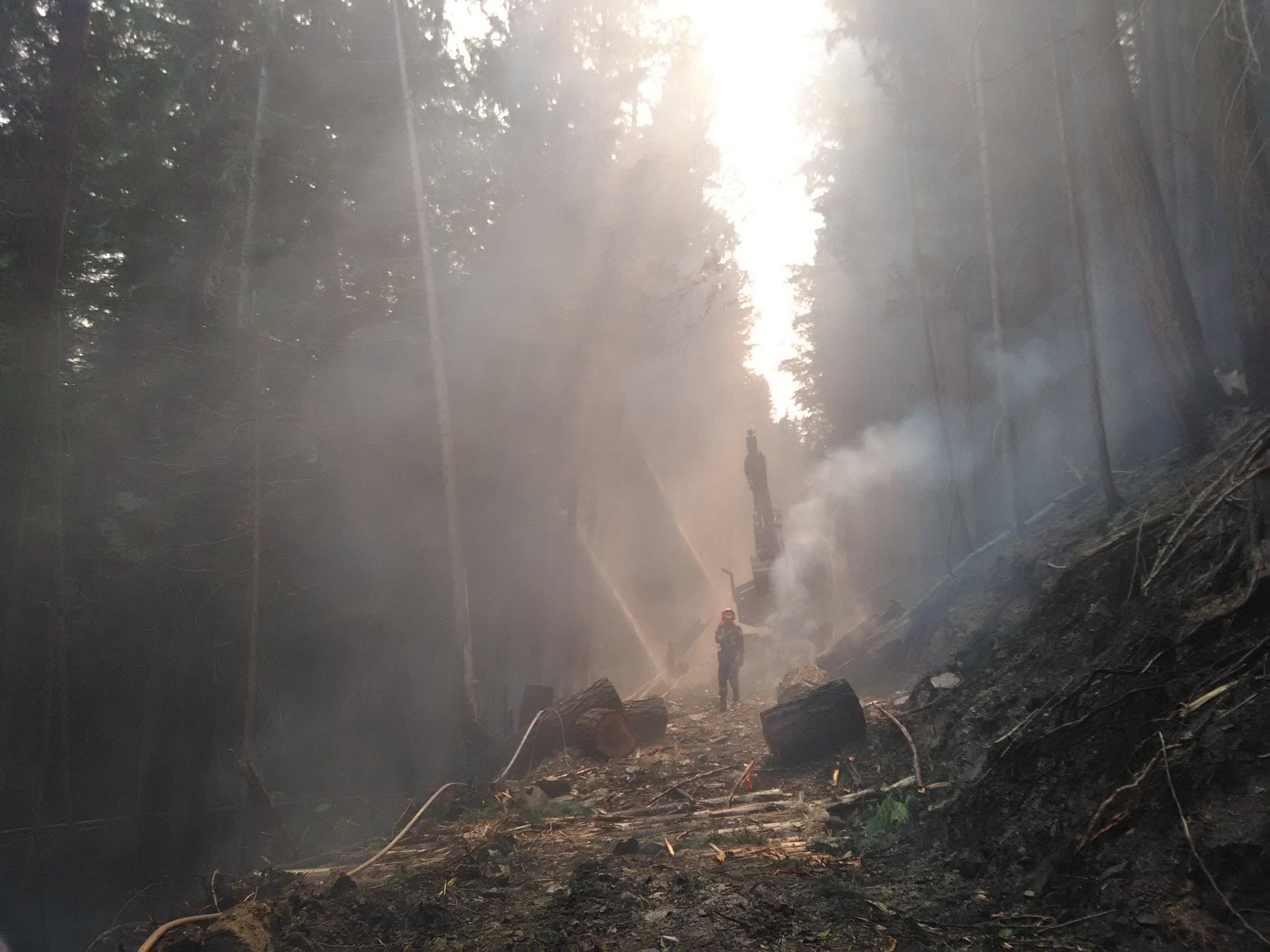 wildfire (6).jpg