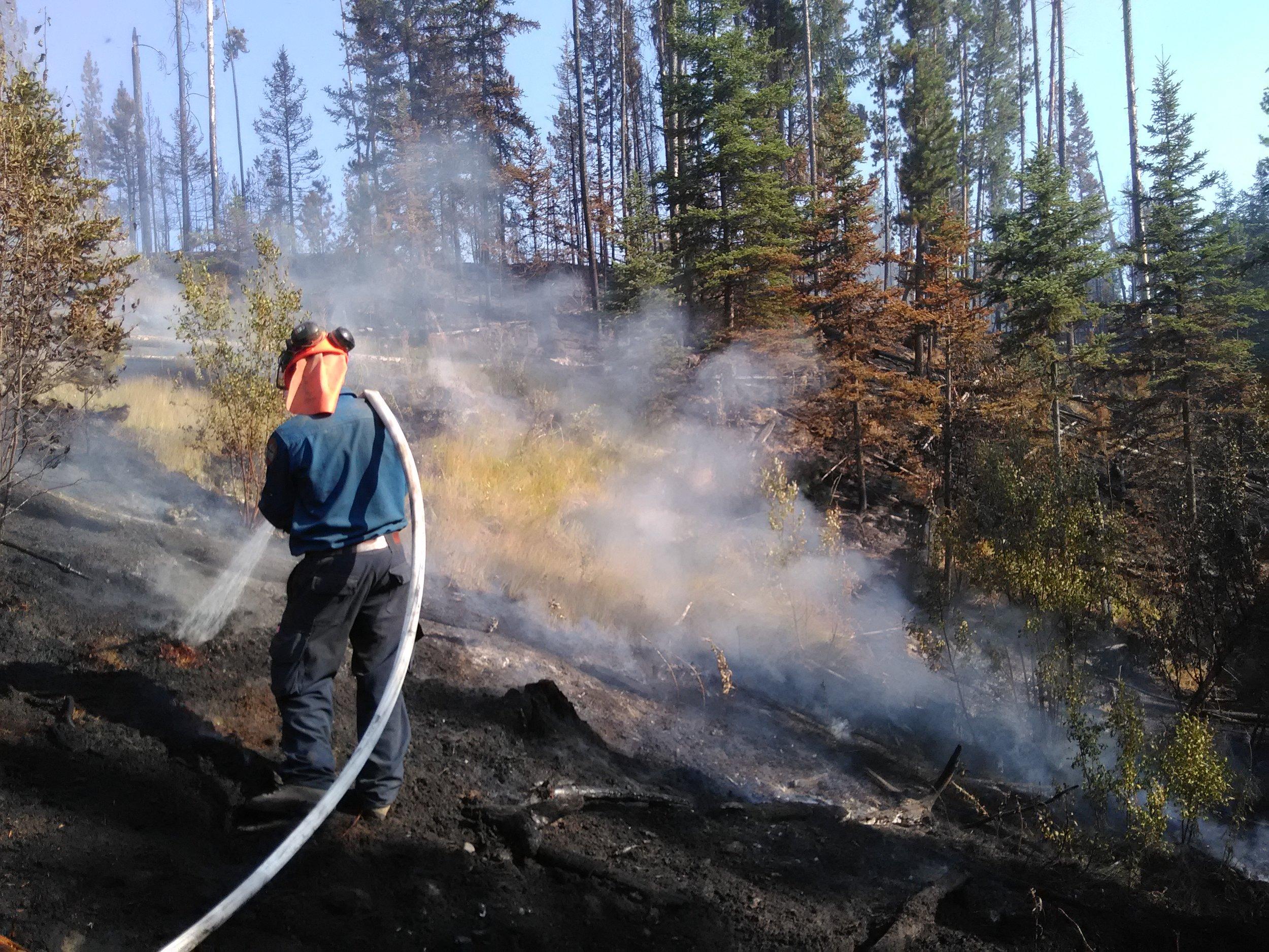 wildfire (7).jpg