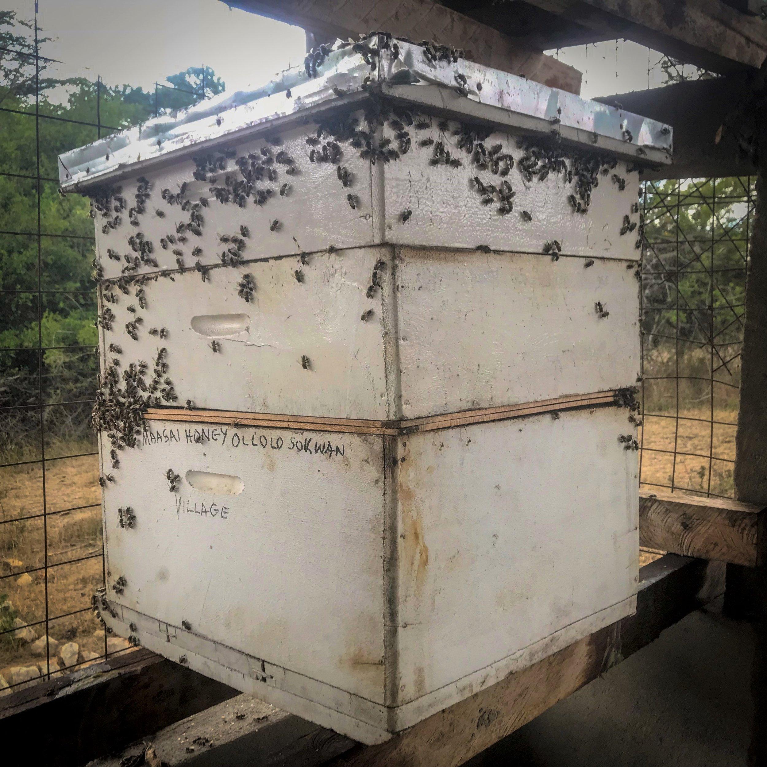 Donate a Hive -