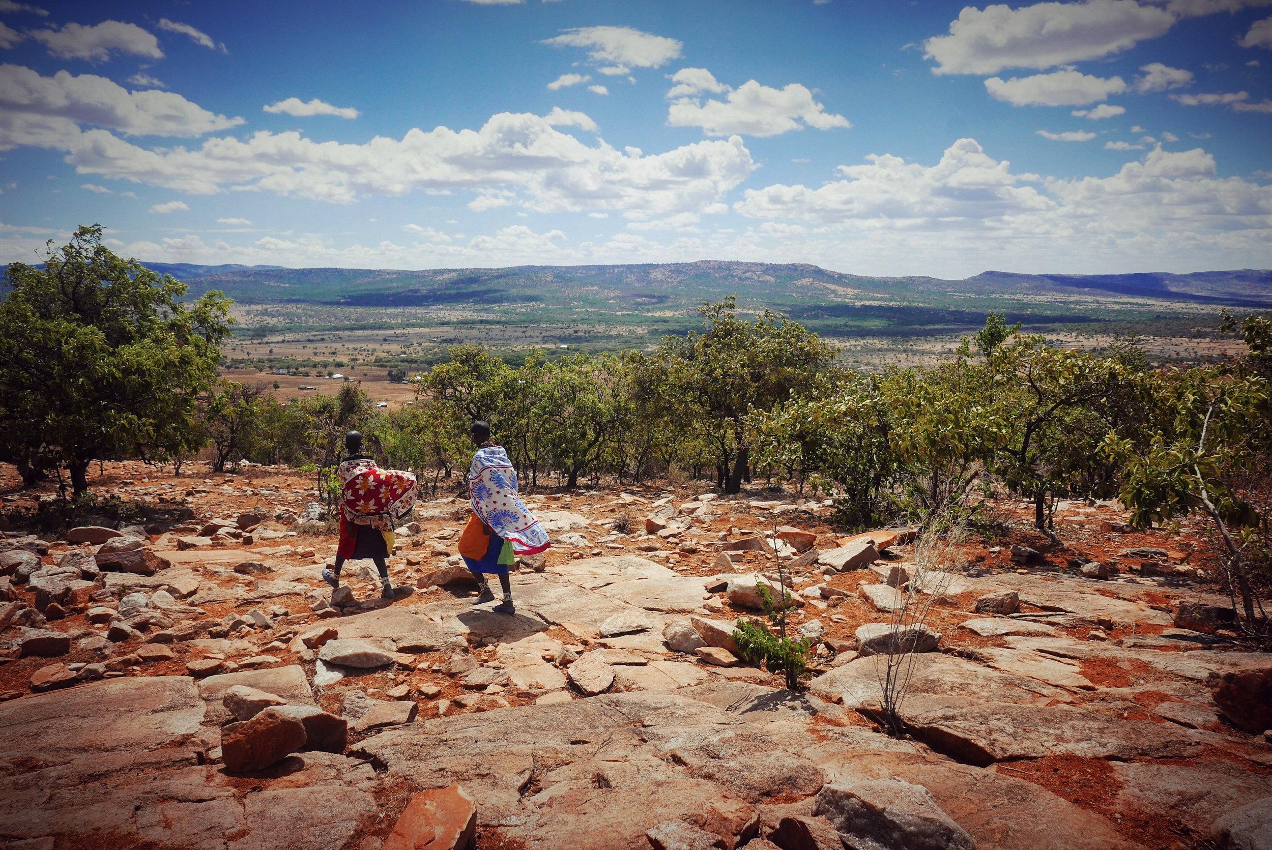 Maasai Honey women, Nalari and Nasarisarau, on their way to work from their distant home in Sero sub-village.