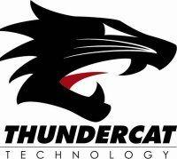 thundercat.jpg